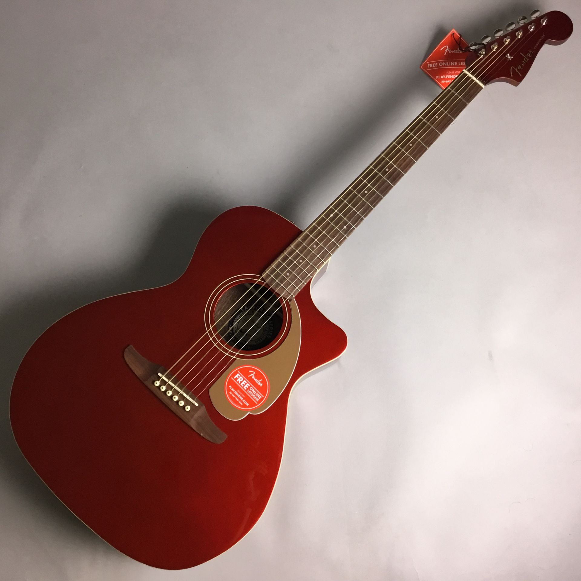 Fender  Newporter Player 写真画像