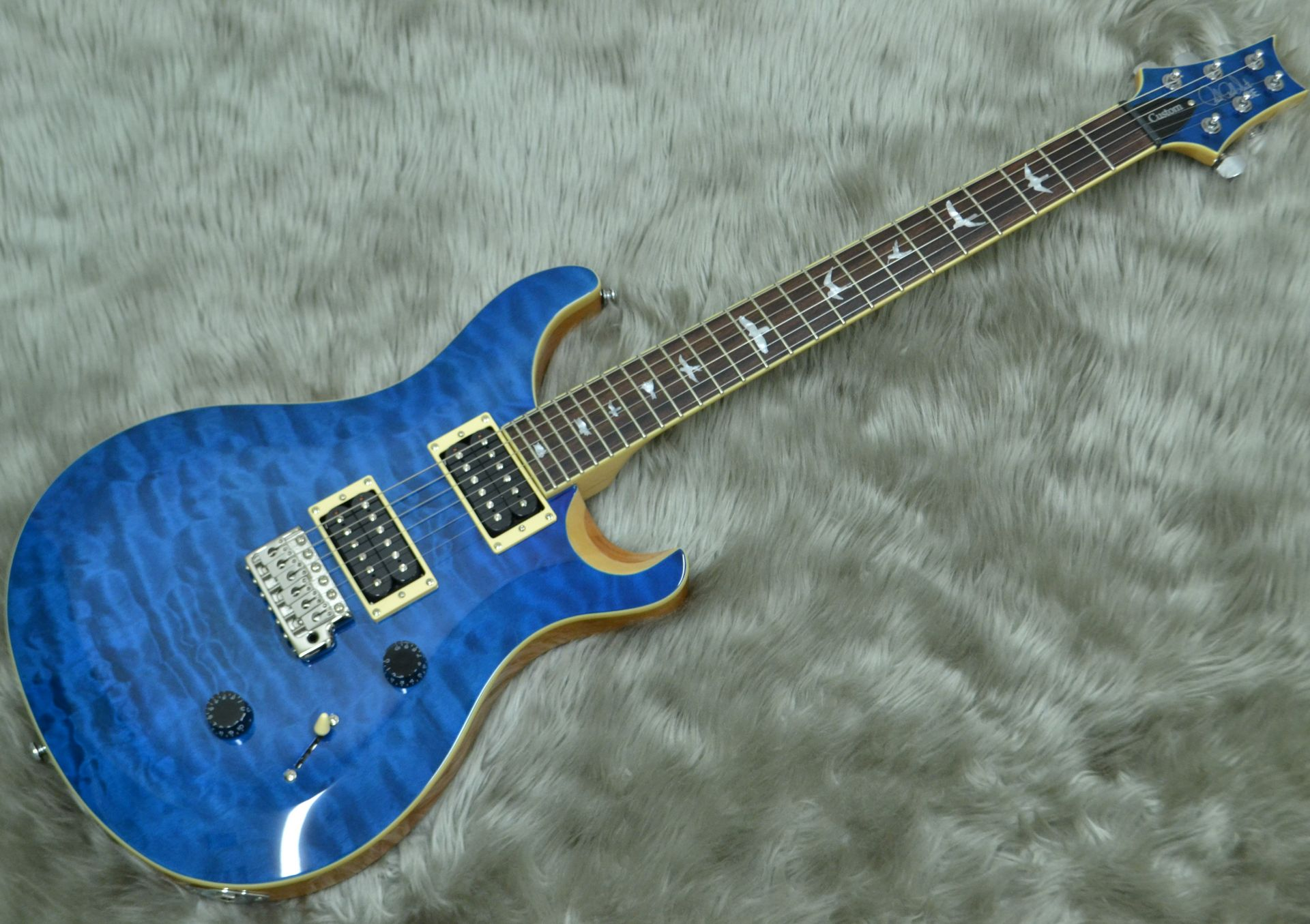 Paul Reed Smith(PRS)  SE CUSTOM 24 QM LTD	BT 写真画像