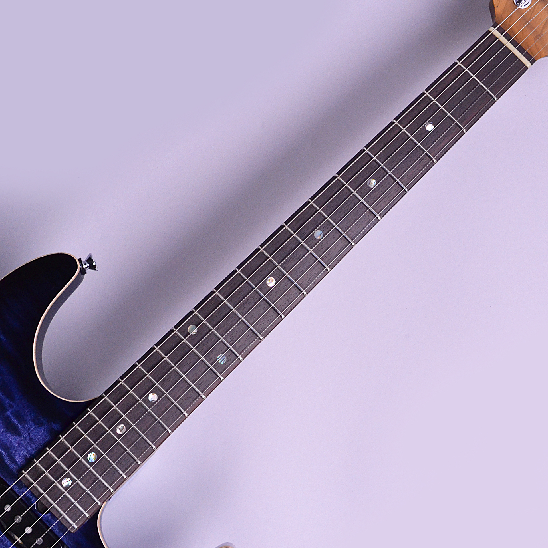 DST-22 Quilt Roasted Flame Maple Neckの指板画像