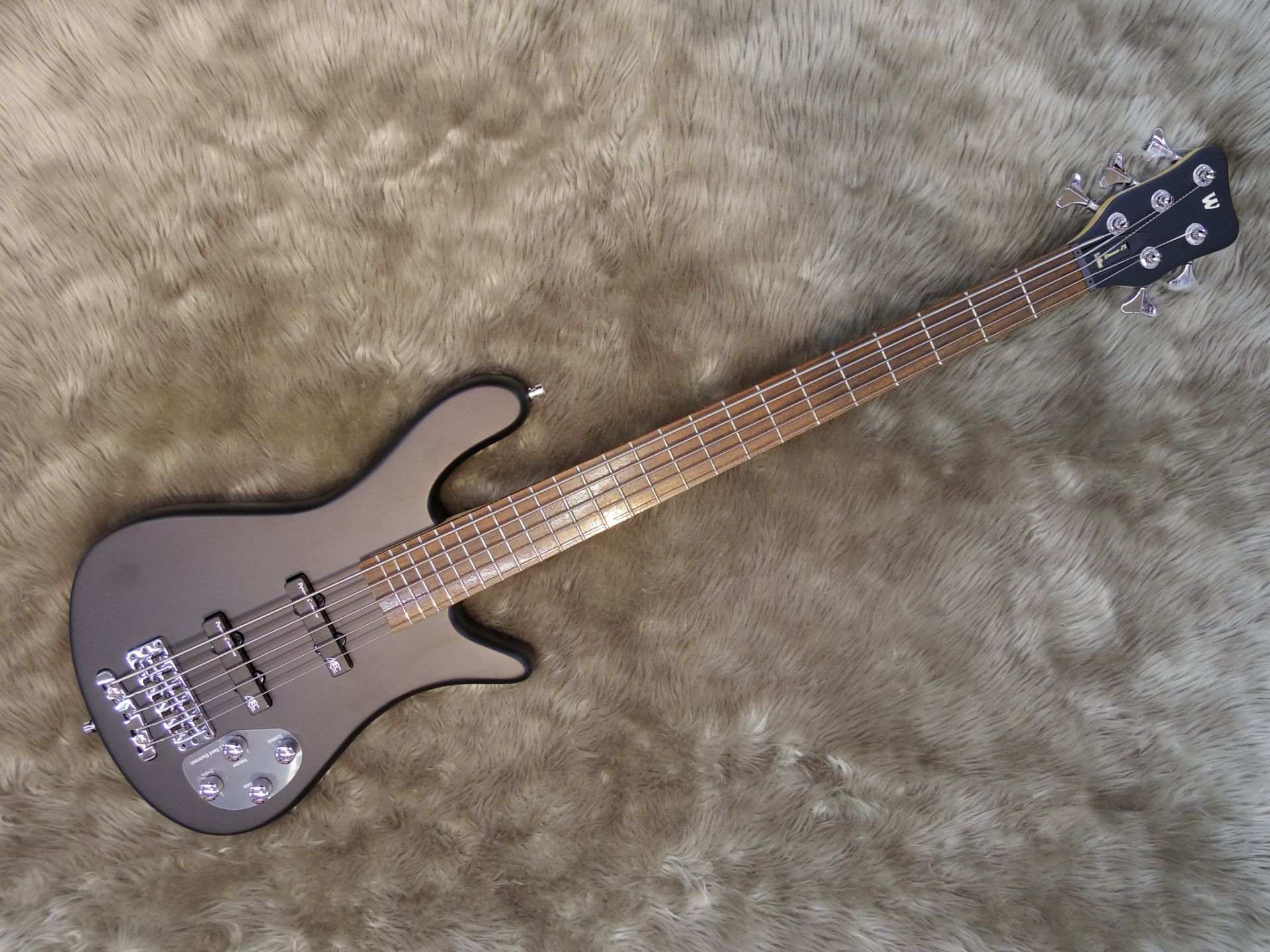Warwick  WB RB STREAMER LX 5 写真画像