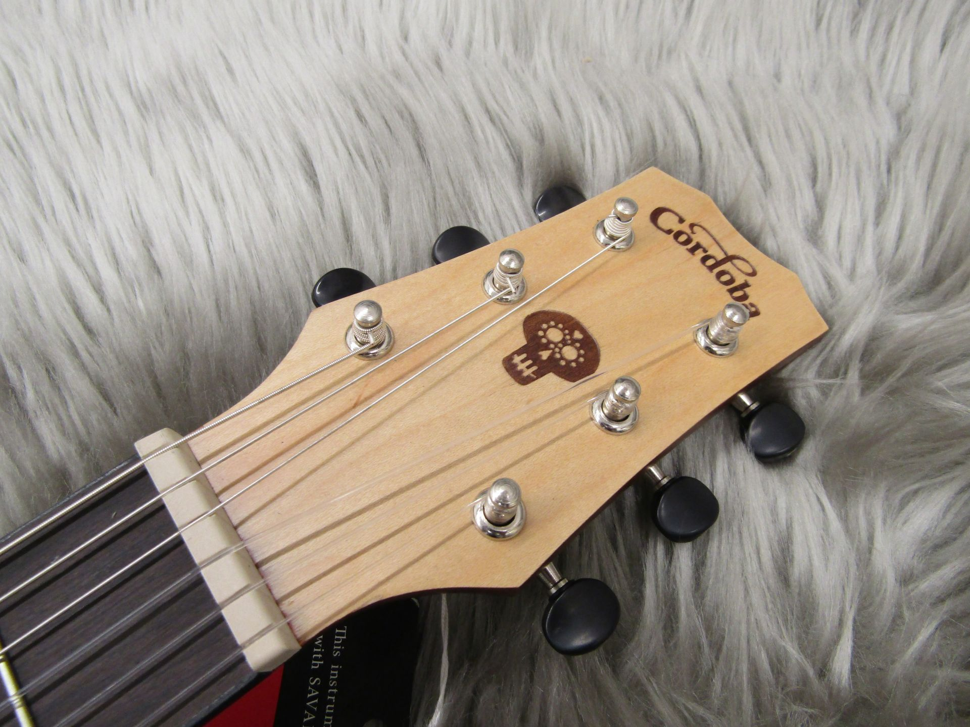 CoCo Guitarのヘッド画像