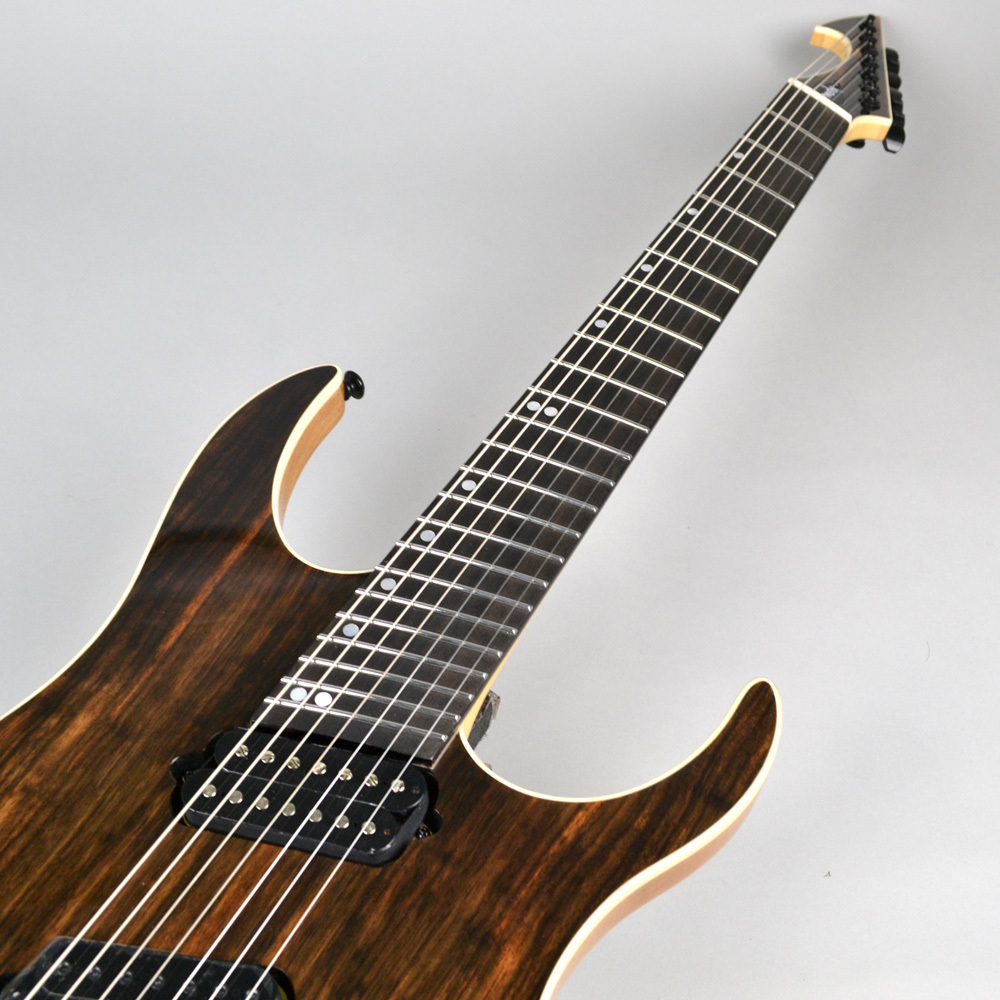 HypeGTR MULTISCALE Macassar Ebony Exotic 7stringsのボディトップ-アップ画像