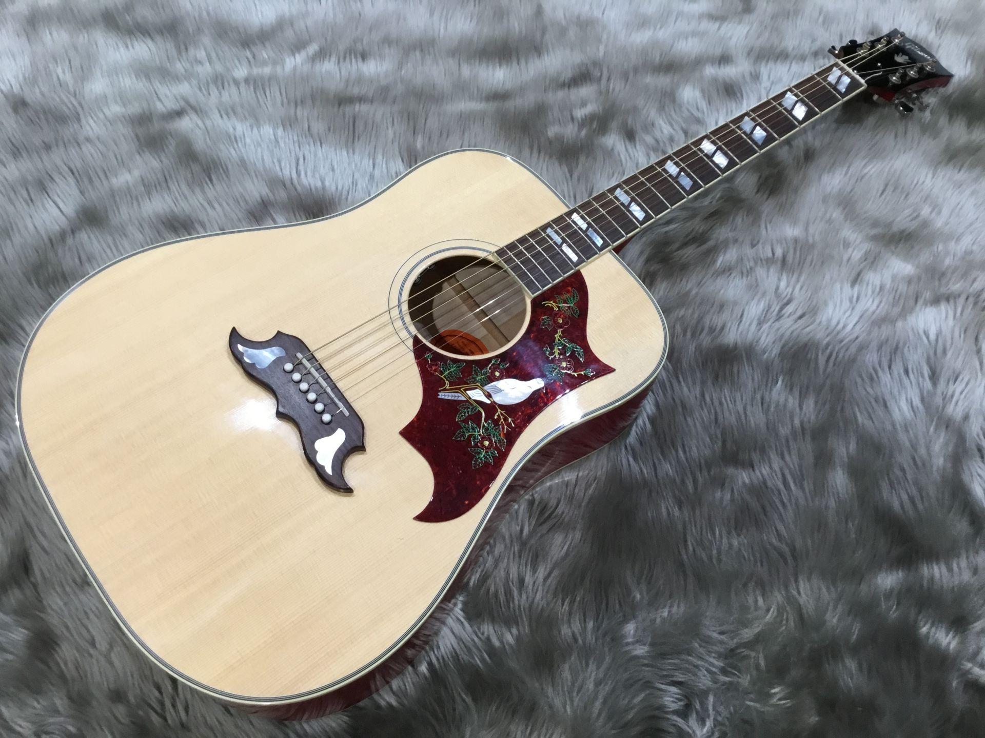 Gibson  Dove 写真画像