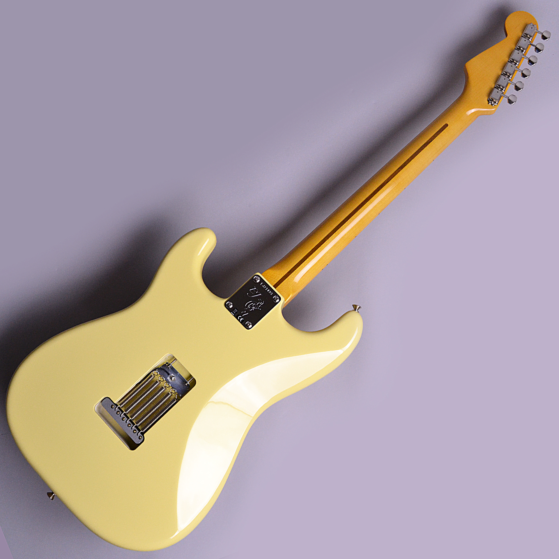 Eric Johnson Signature Thinline Stratocasterのボディバック-アップ画像
