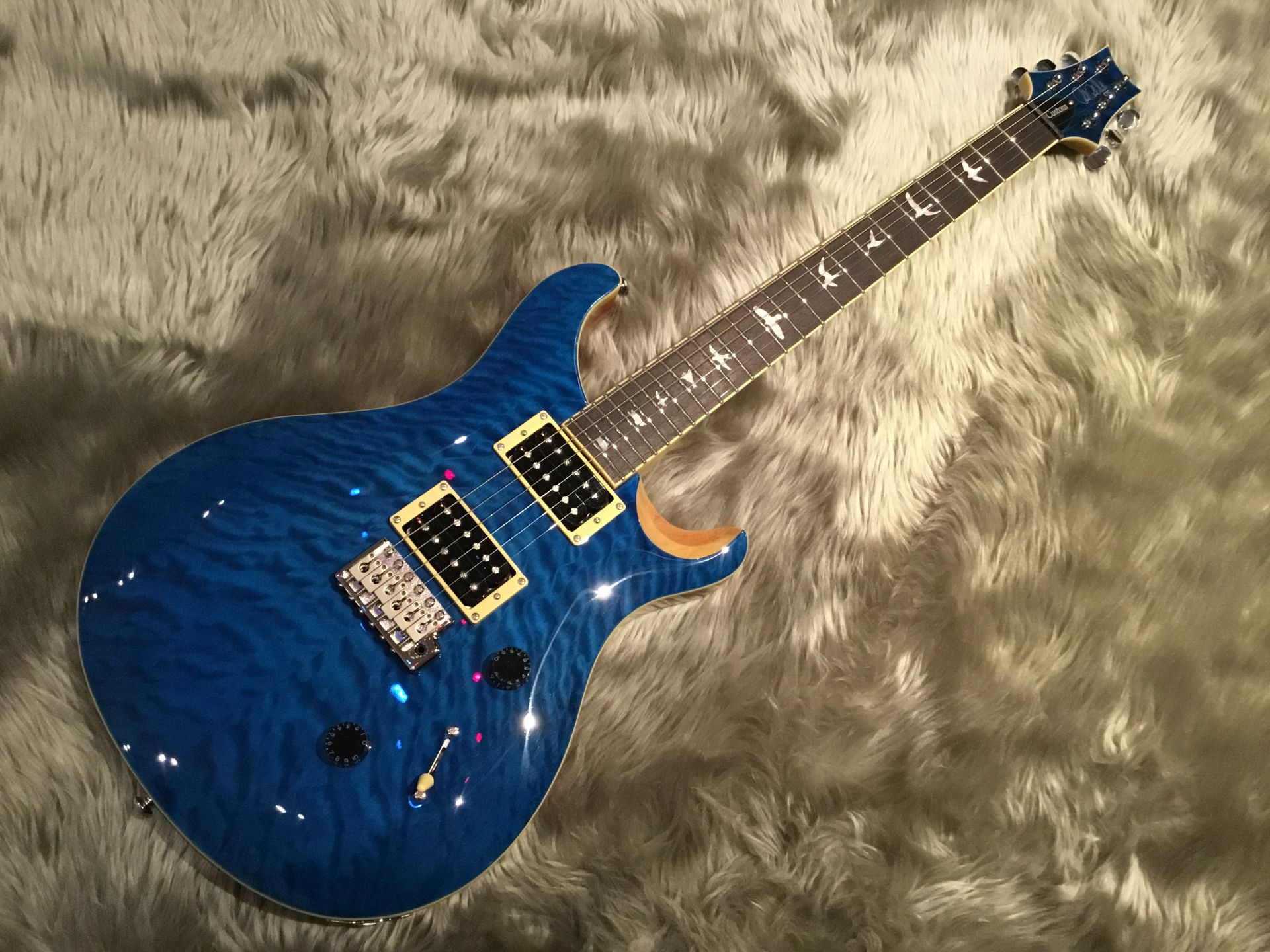 SE CUSTOM 24 QM LTDの全体画像