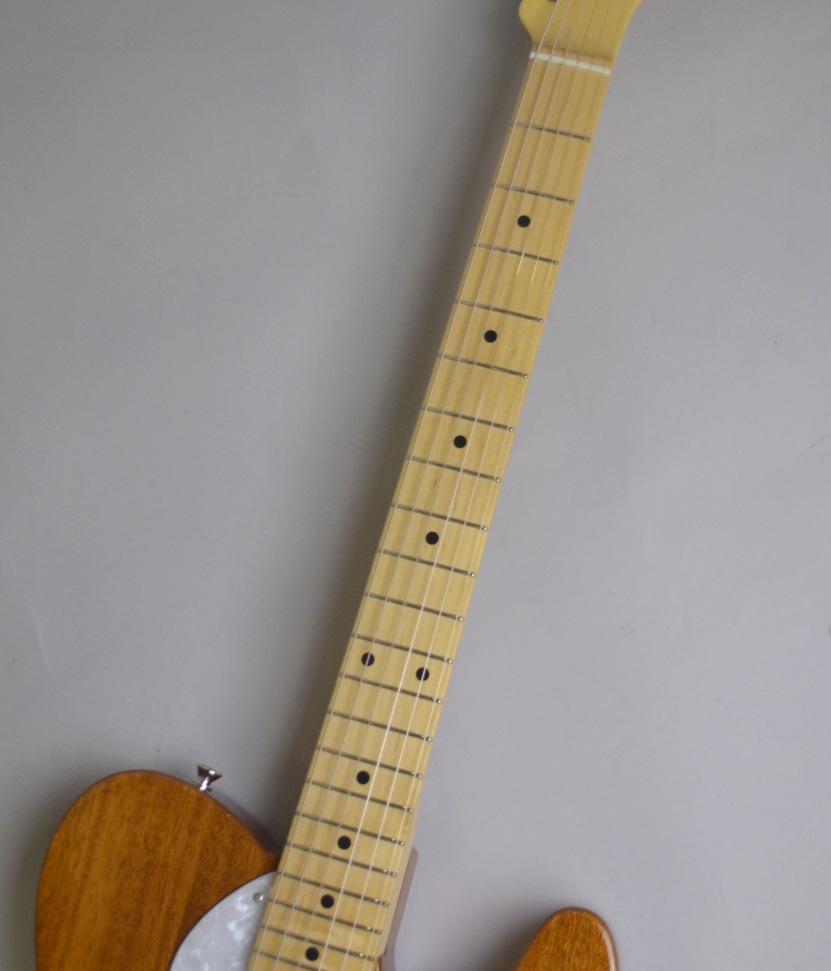 Made in Japan Traditional 69 Telecaster Thinline NAT シンラインのボディバック-アップ画像