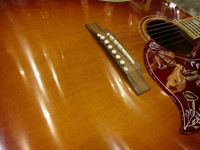 Hummingbird Vintageのボディトップ-アップ画像