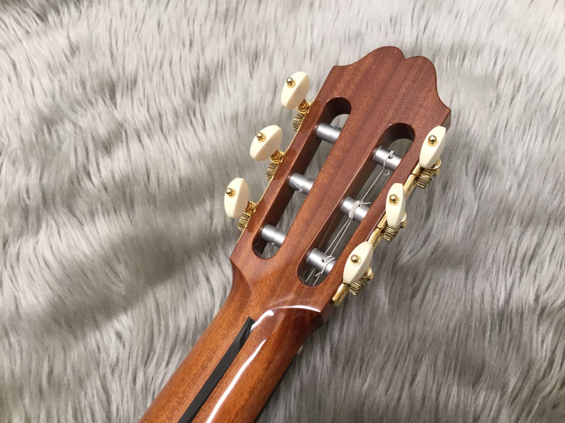 ダブルサイド RR(ローズ・ローズ)のヘッド裏-アップ画像