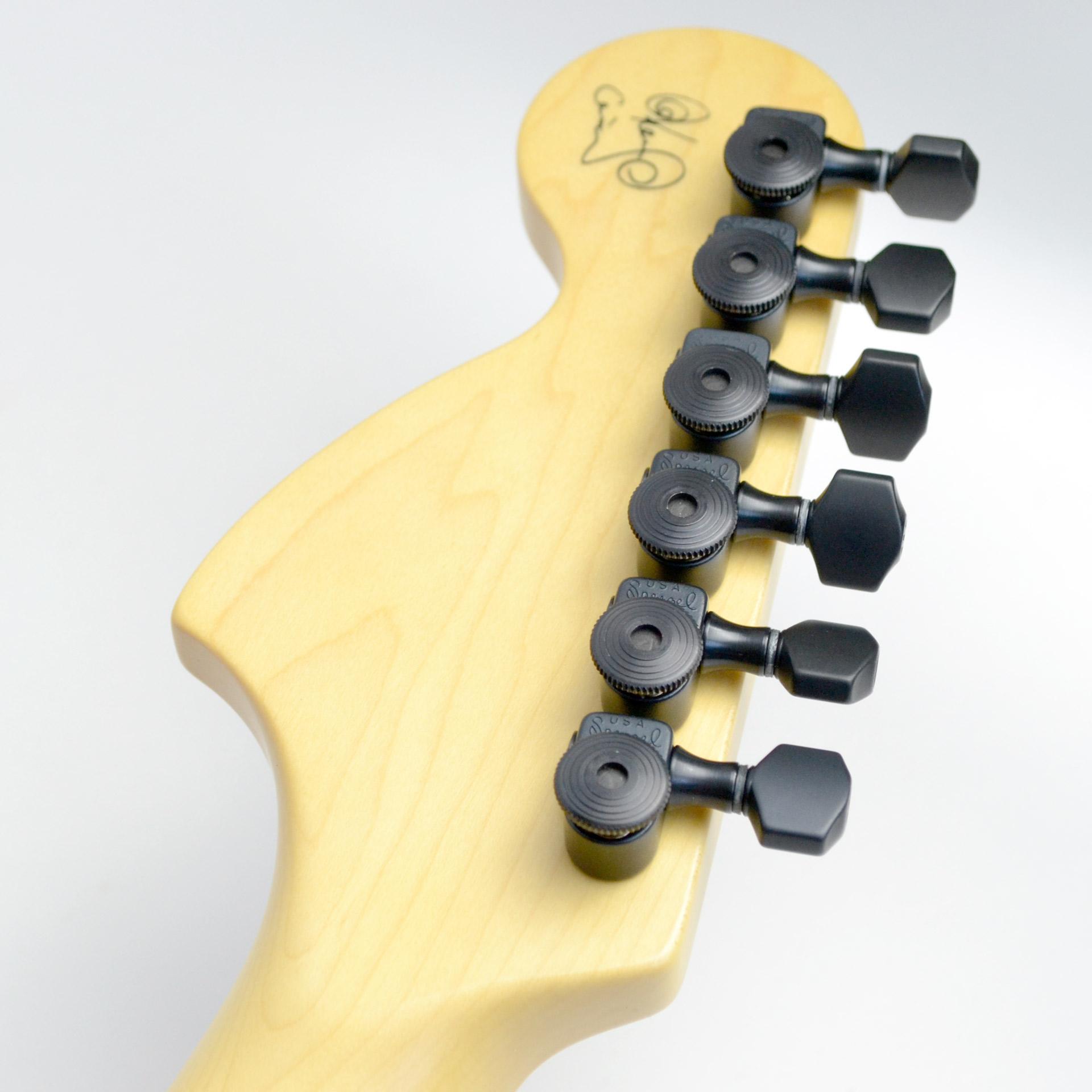 KEN Stratocasterのケース・その他画像