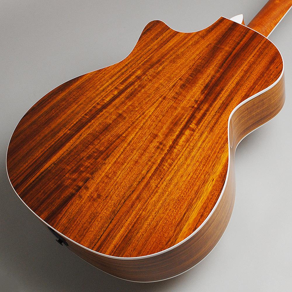 Taylor 414ce ES2/N エレアコギター 【テイラー 414ce】【ビビット南船橋店】【アウトレット】のボディバック-アップ画像