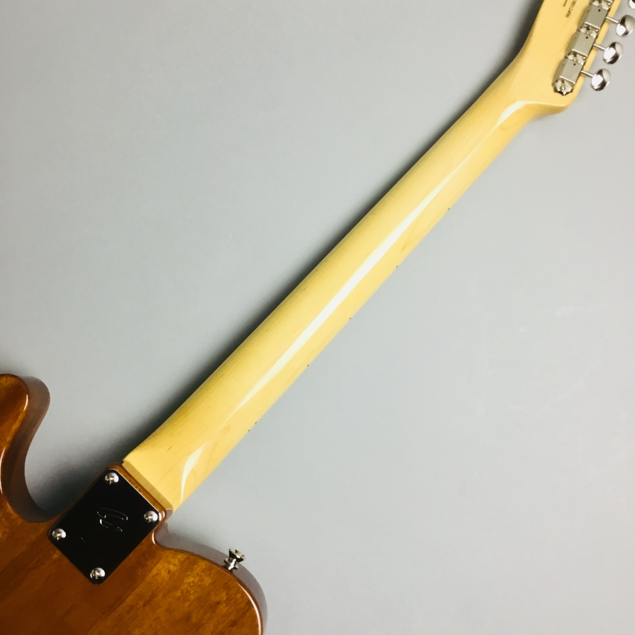 MADE IN JAPAN TRADITIONAL 69 TELECASTER THINLINEのケース・その他画像