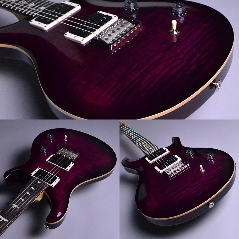 CE 24 Angry Larry (AL)【S/N:18 257655】のケース・その他画像