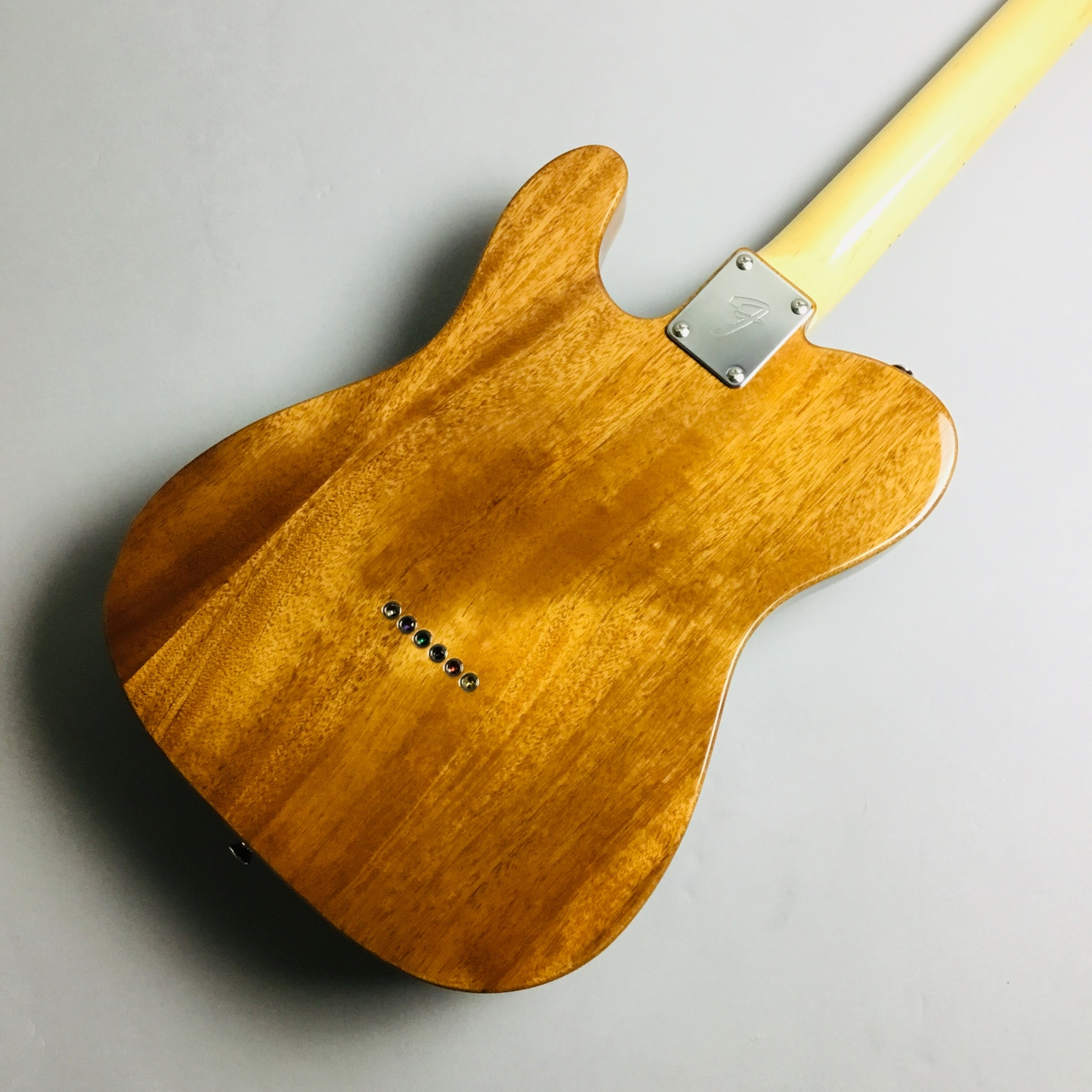 MADE IN JAPAN TRADITIONAL 69 TELECASTER THINLINEのボディバック-アップ画像