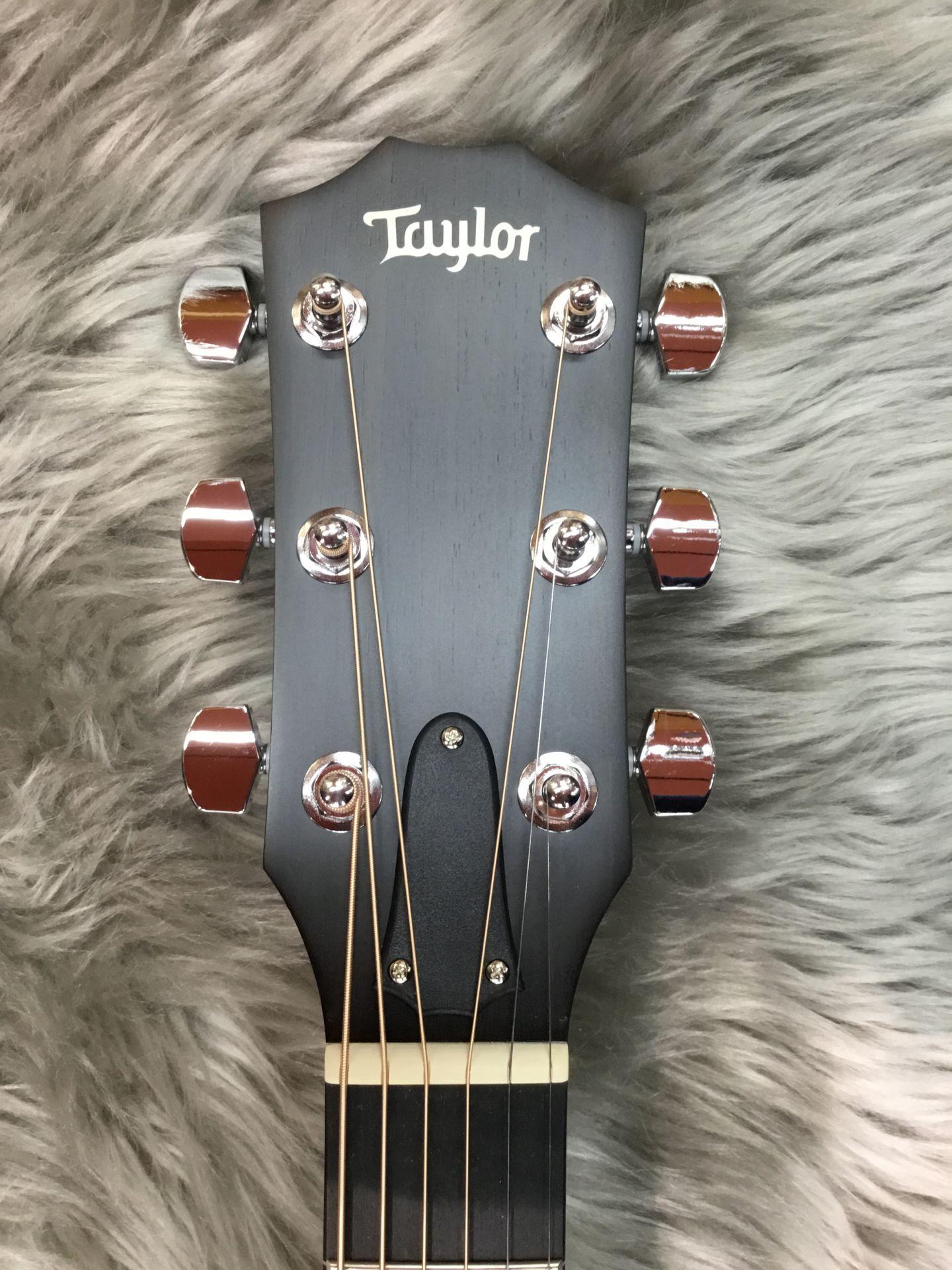 Taylor 214ce-Koaのヘッド画像