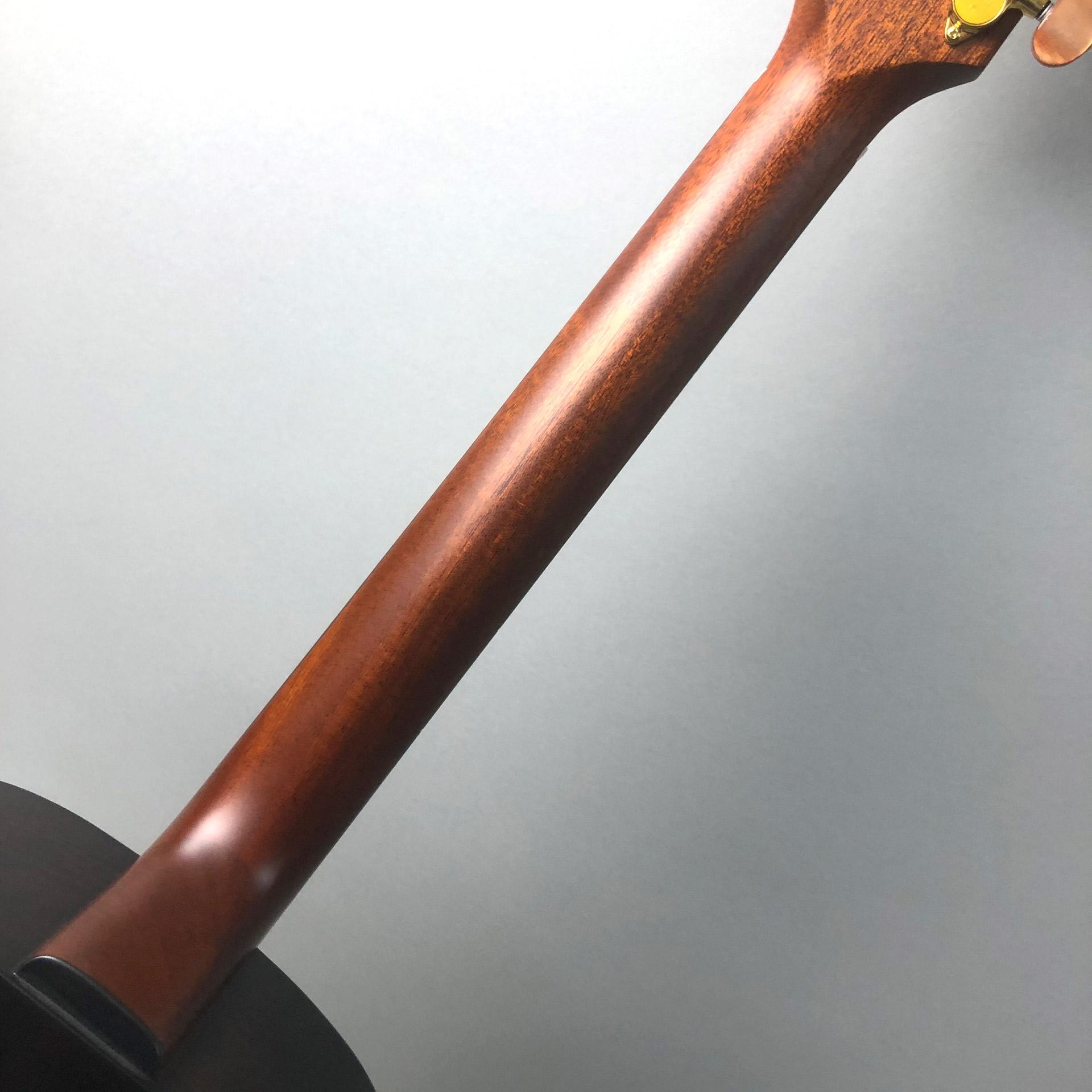 SK-T CTM 九州限定モデルの指板画像