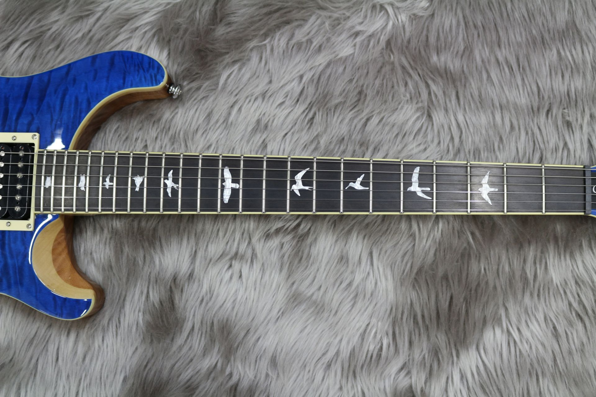SE CUSTOM 24 QM LTD – Paul Reed Smithの指板画像