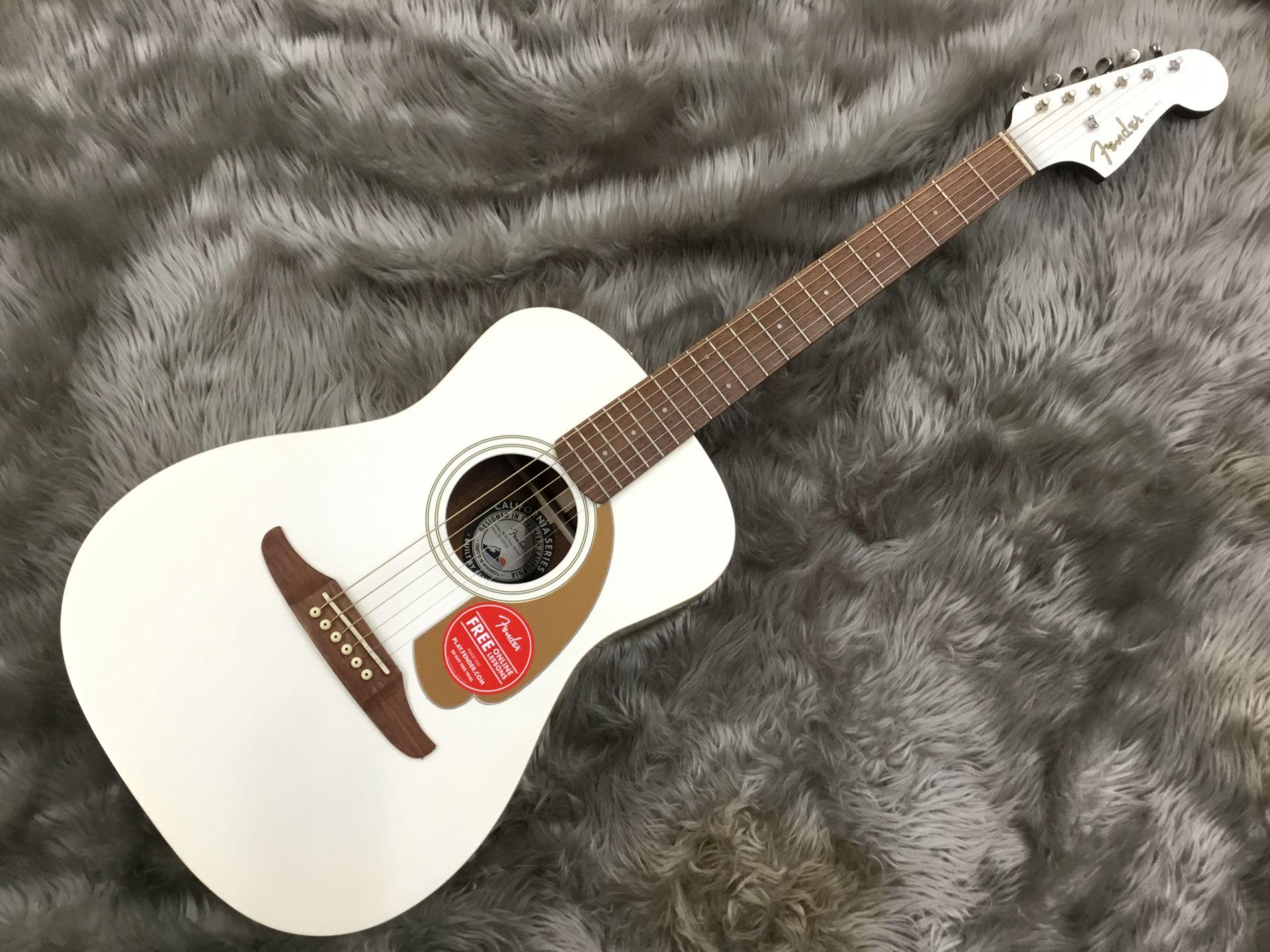 Fender  Malibu Player 写真画像
