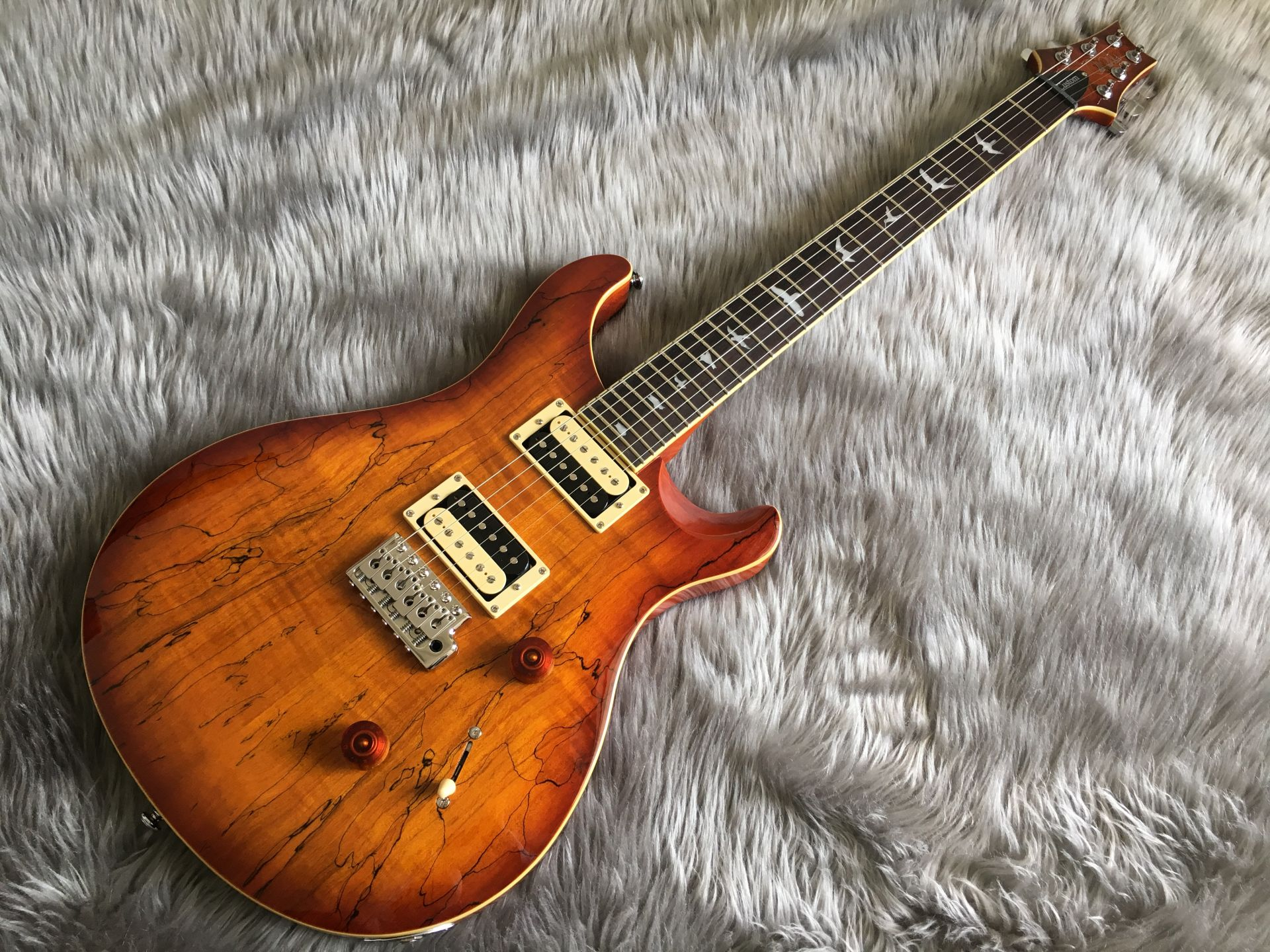 Paul Reed Smith(PRS)  SE Custom 24 SPALT 写真画像