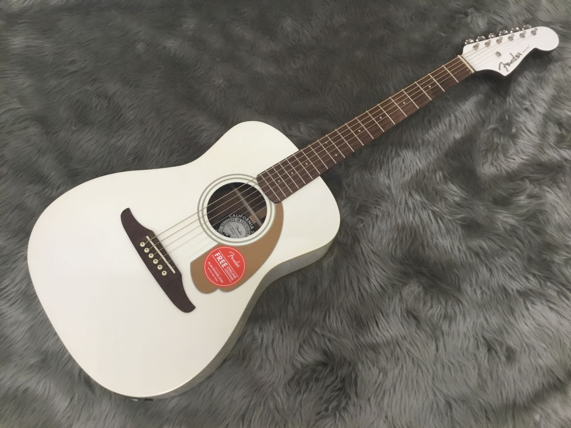 Fender  Malibu Player 写真画像