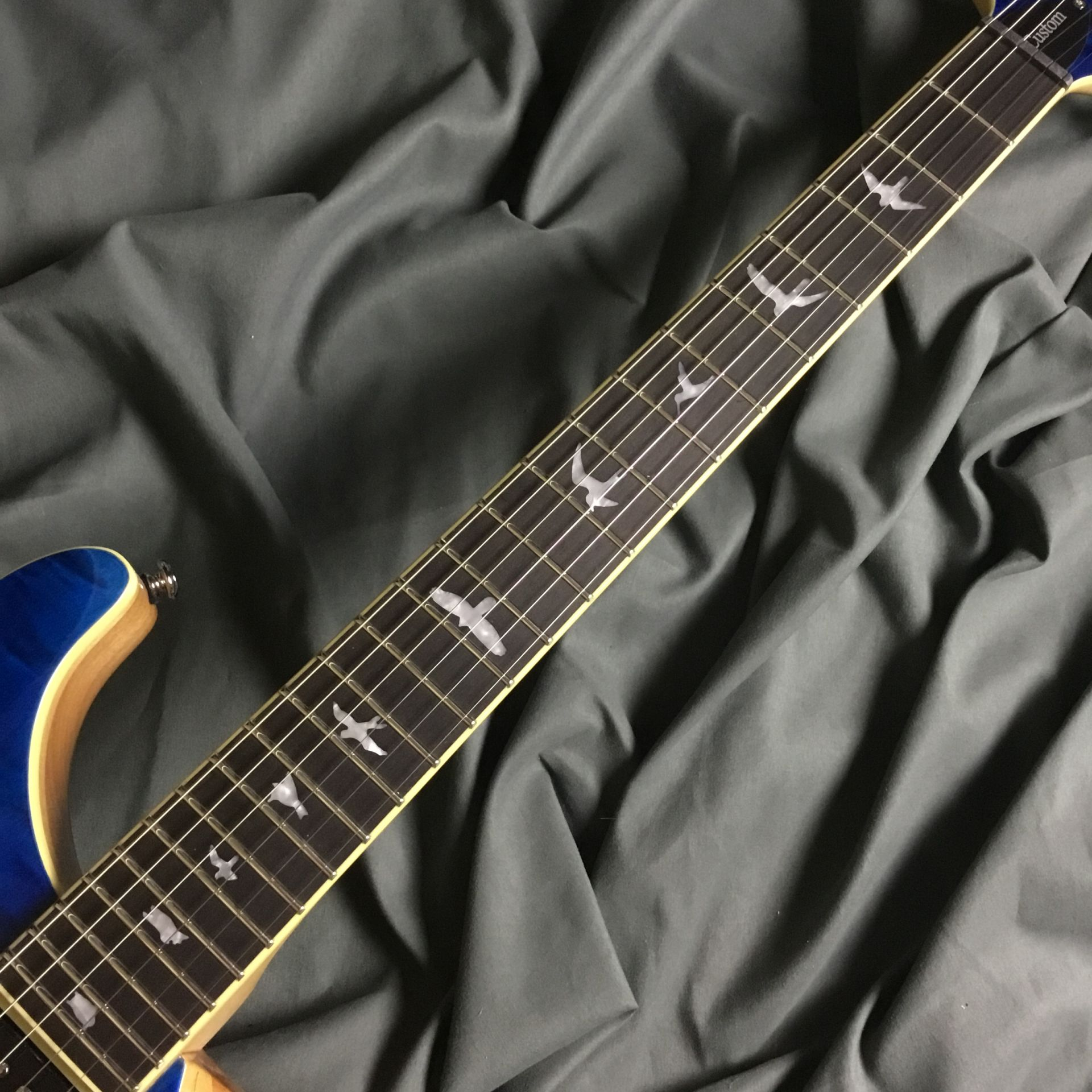 SE CUSTOM 24 QM LTD  Blue Matteo 島村楽器オリジナルモデルのヘッド画像