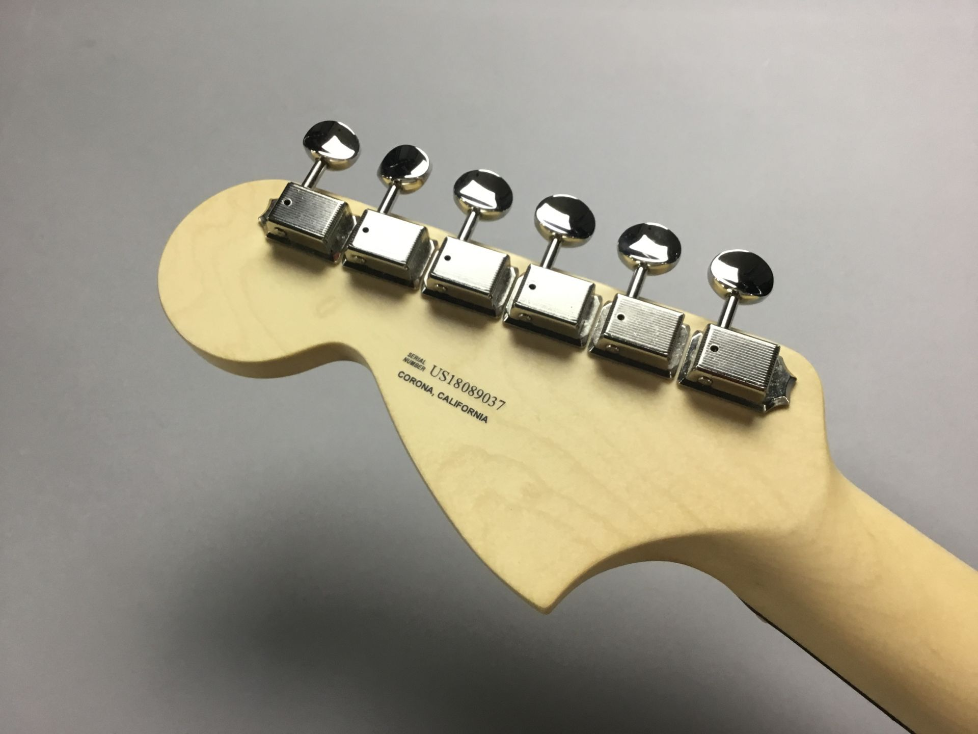 American Performer Stratocasterのケース・その他画像