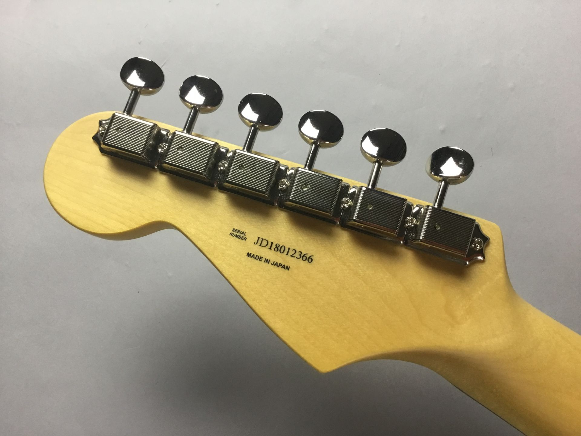 Hybrid 60s Stratocasterのケース・その他画像