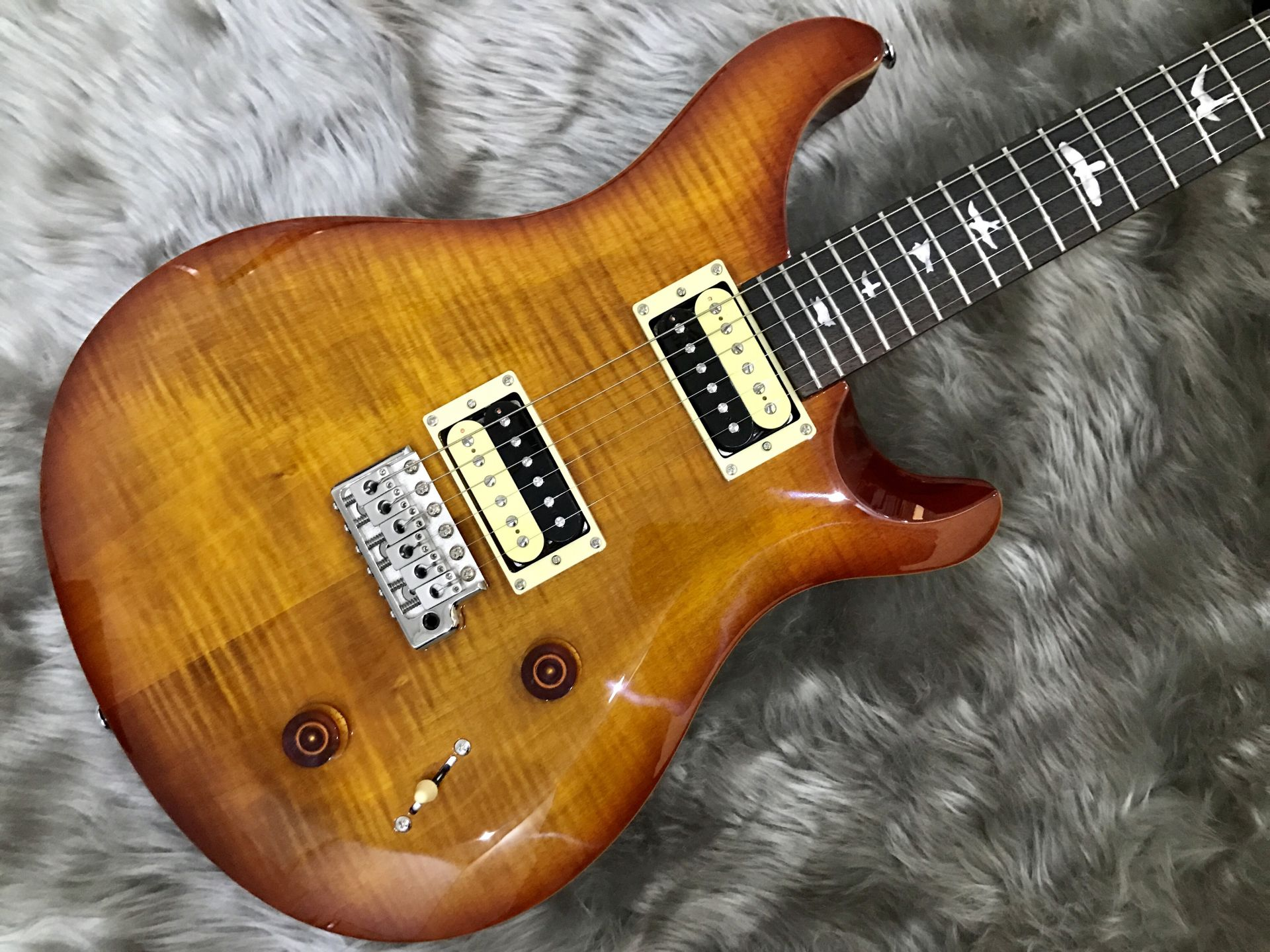 Paul Reed Smith(PRS)  SE CUSTOM22 写真画像