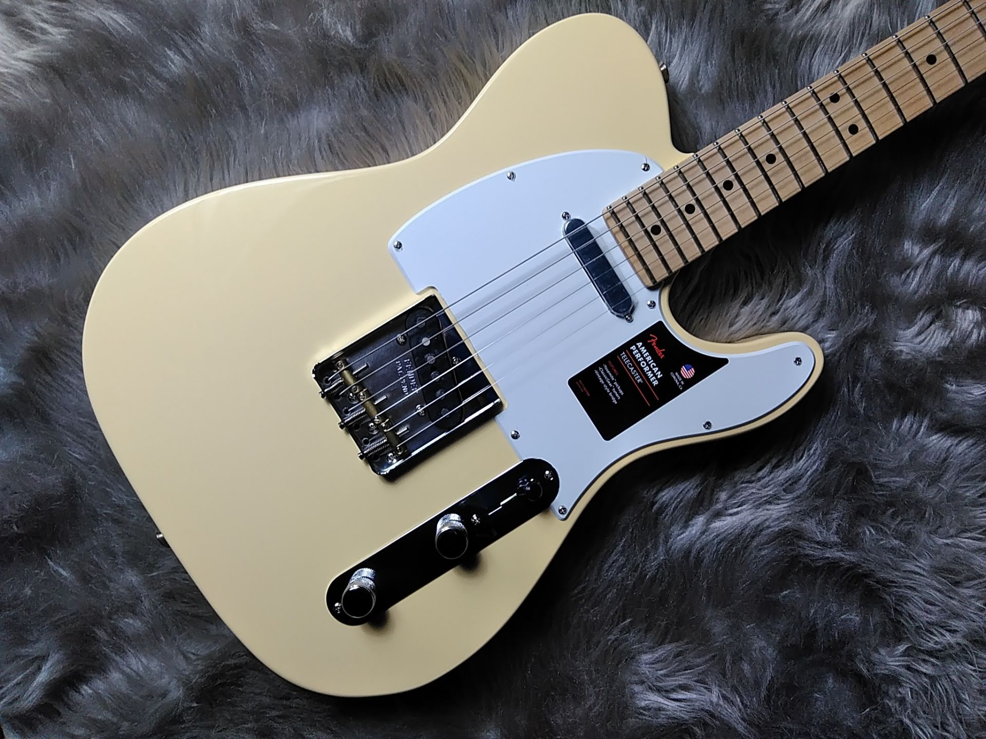 Fender  AM PERF TL MN 写真画像