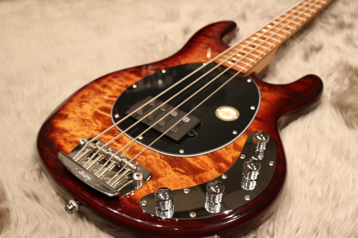 Sterling by MUSIC MAN  RAY34QM 写真画像