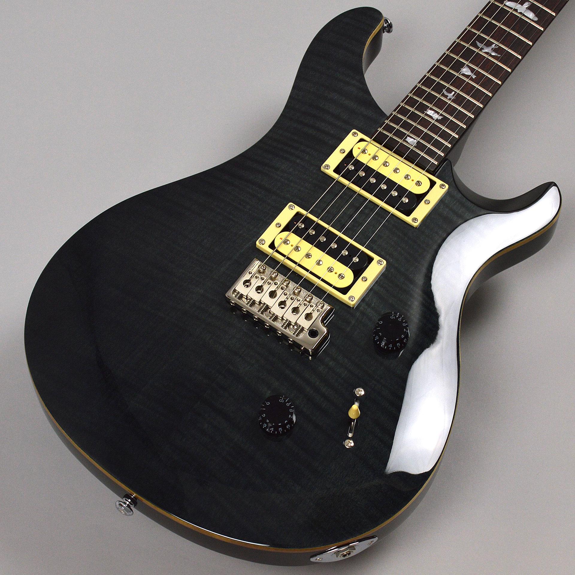SE Custom 24 Gray Blackのボディトップ-アップ画像
