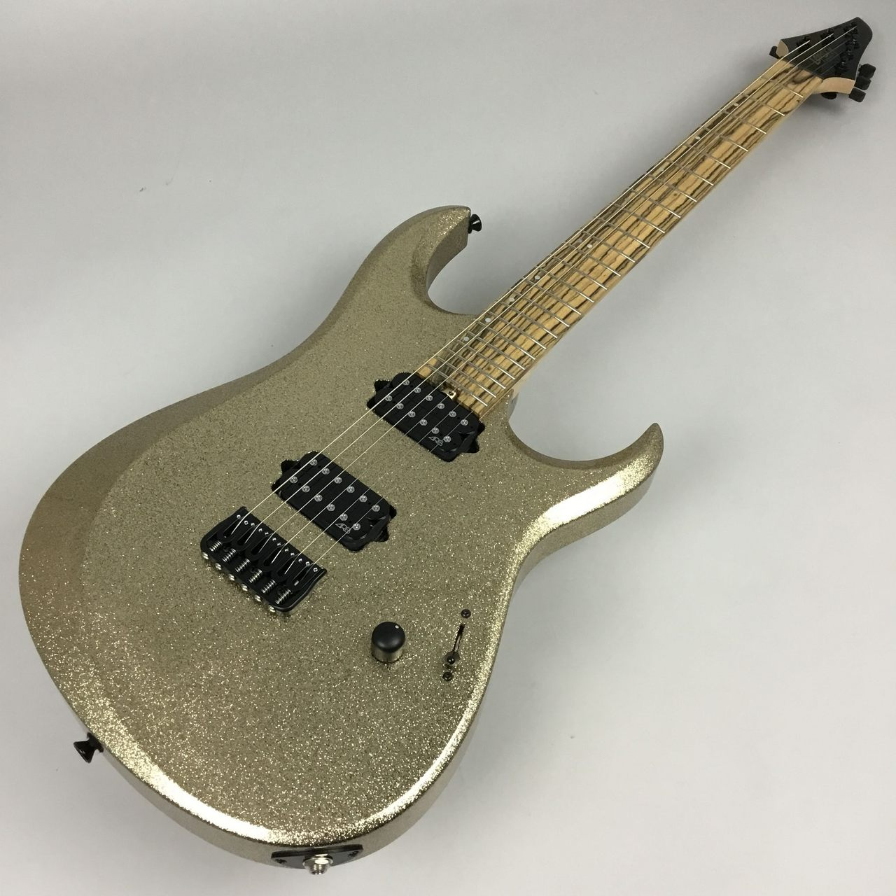 Lepsky Guitars  Element 6 写真画像
