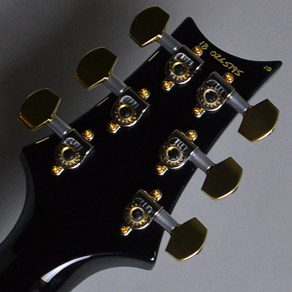 Custom24 Pattern Regular 10 Top Whael Blue (WB)【S/N:18 0265195】の指板画像