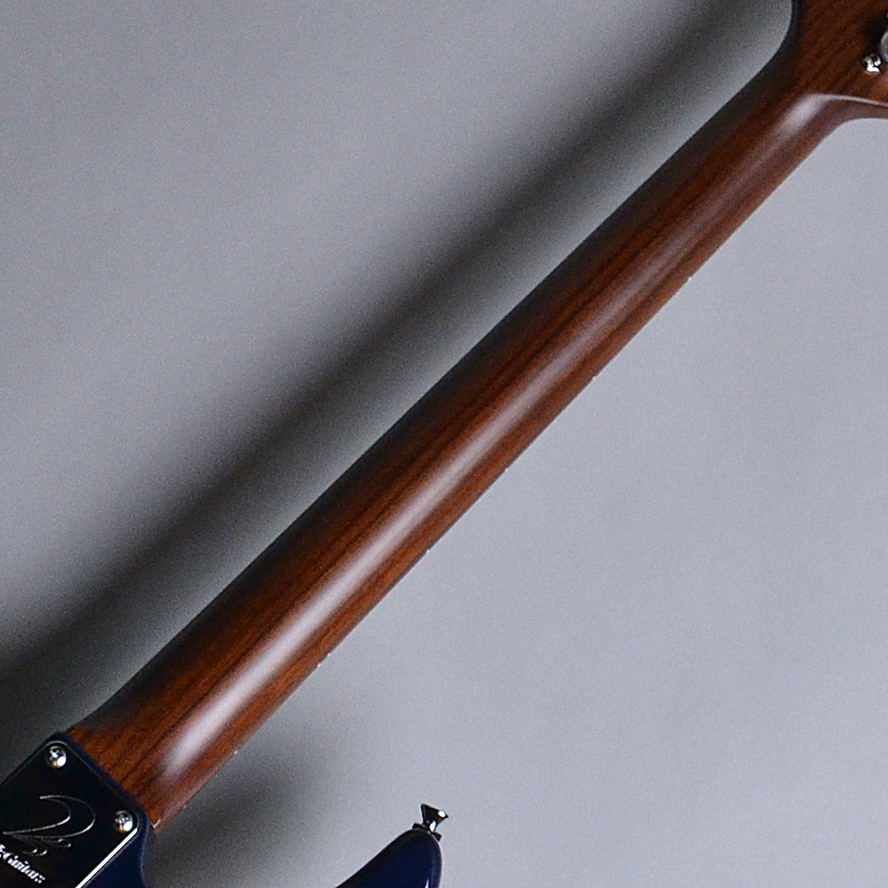 DST24 Custom Made Whale Blue Burst (WBB) 【S/N:013645】の全体画像(縦)