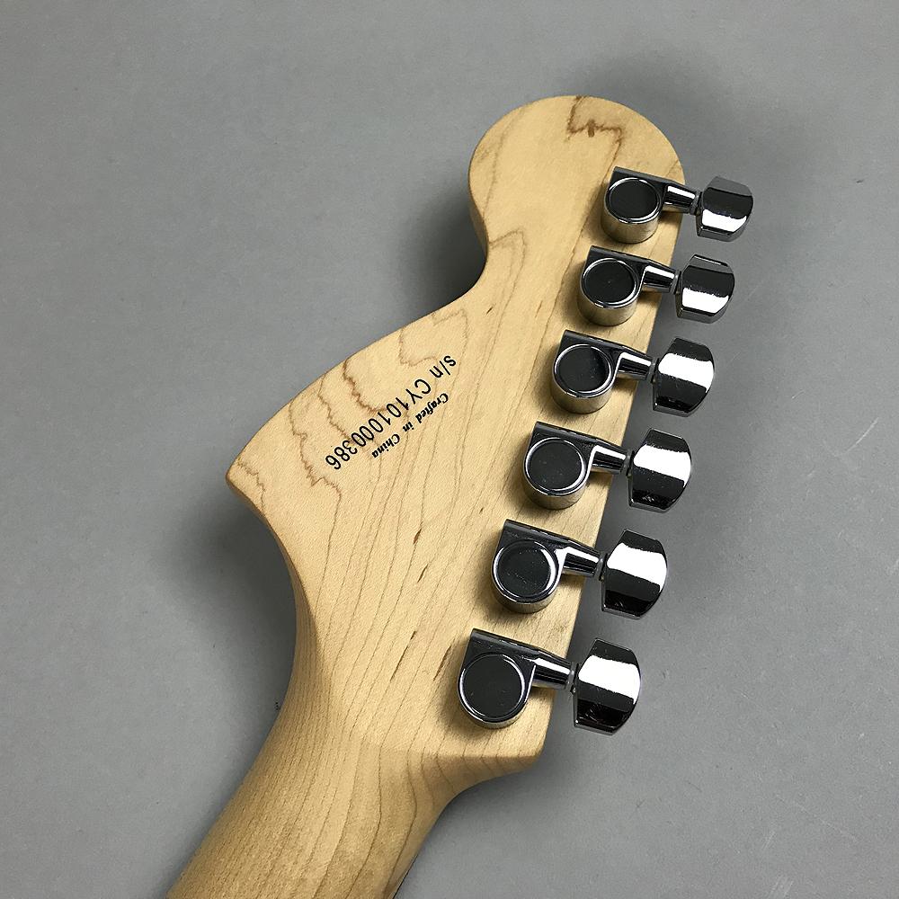 Standard Stratocasterの全体画像(縦)