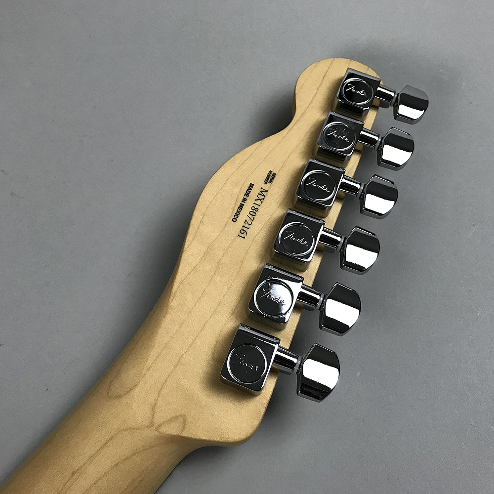 Player Telecaster HHのヘッド裏-アップ画像