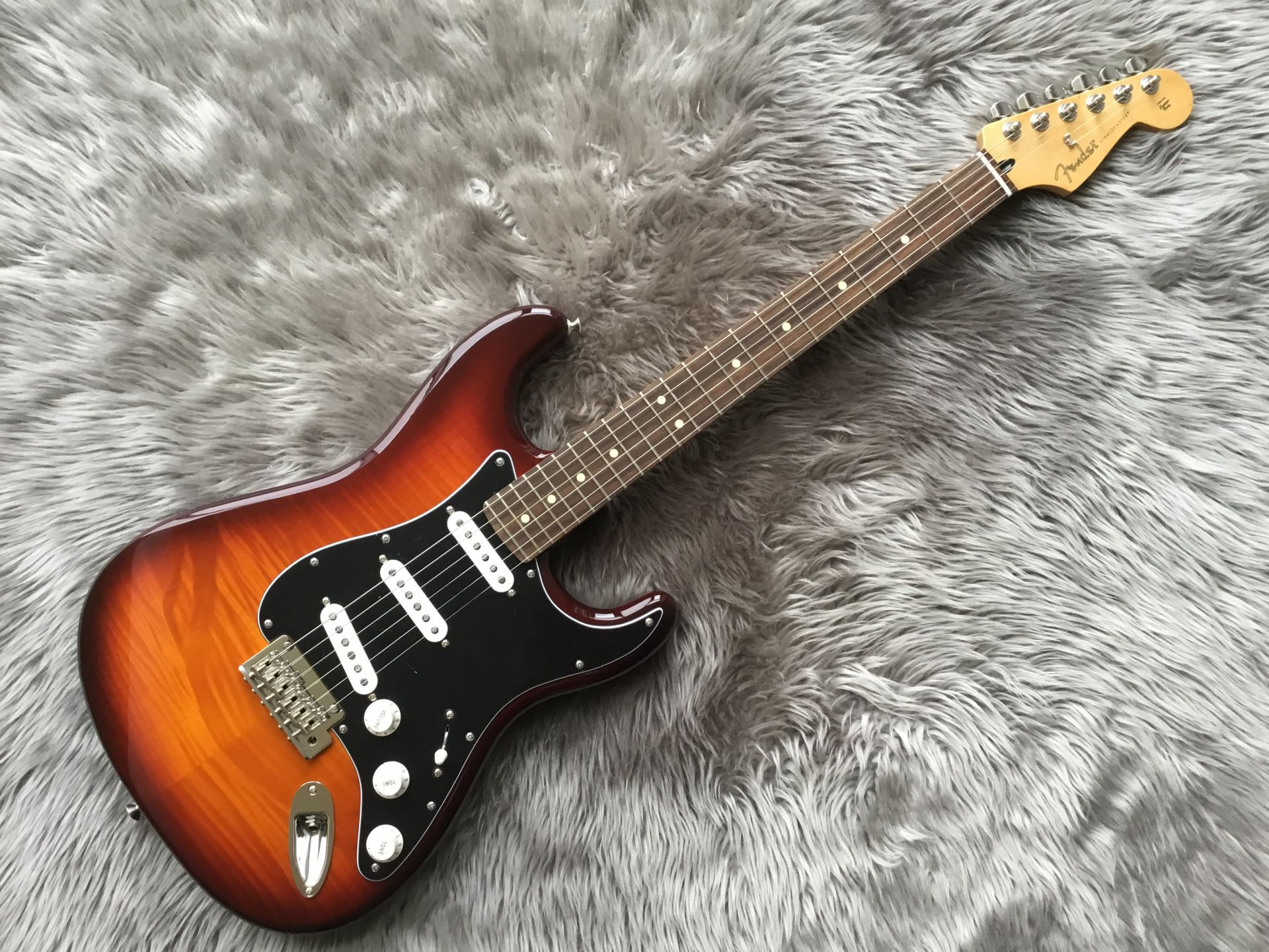 PLAYER STRATOCASTER® PLUS TOPのボディトップ-アップ画像