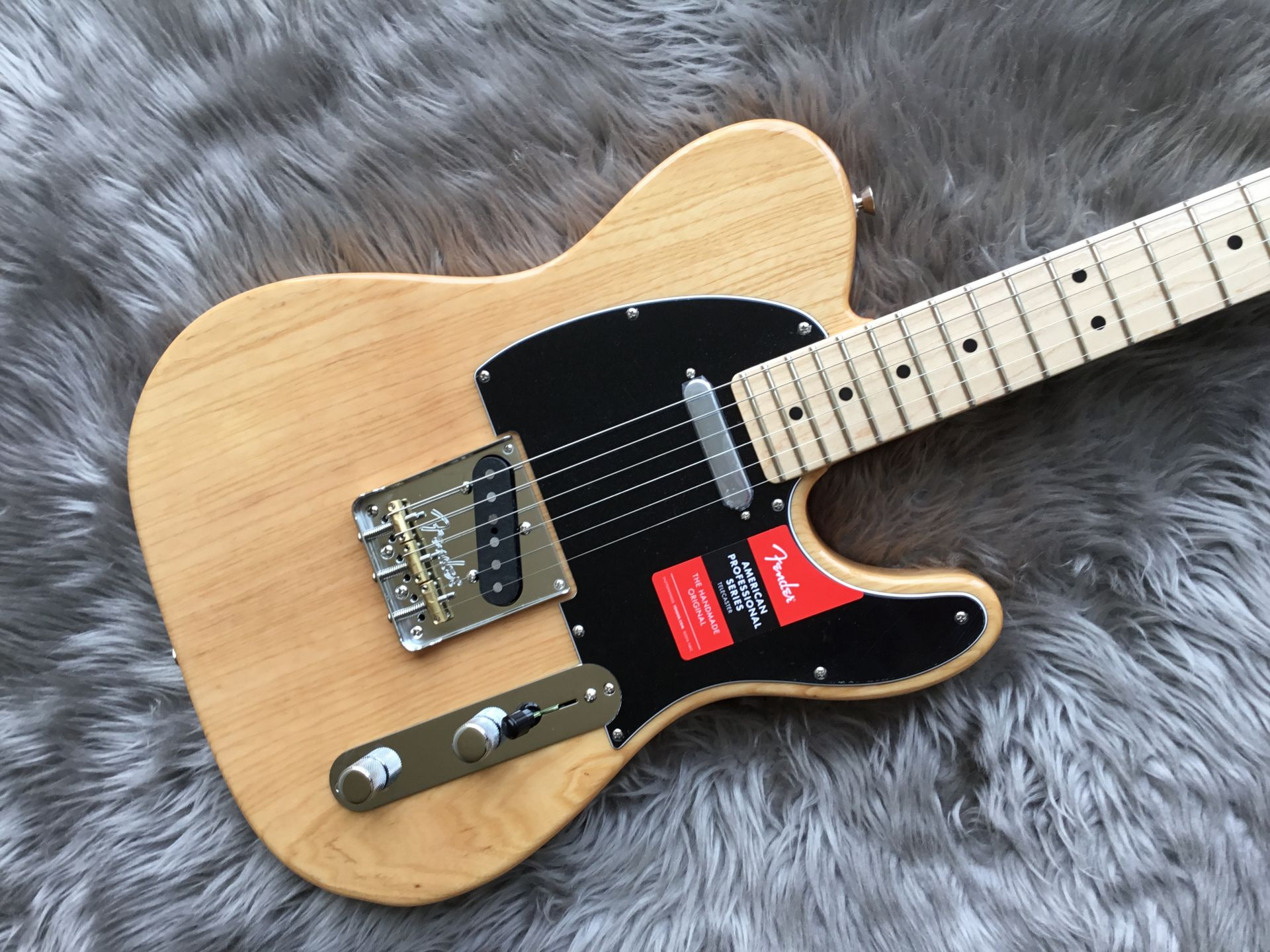 AMERICAN PROFESSIONAL TELECASTER®