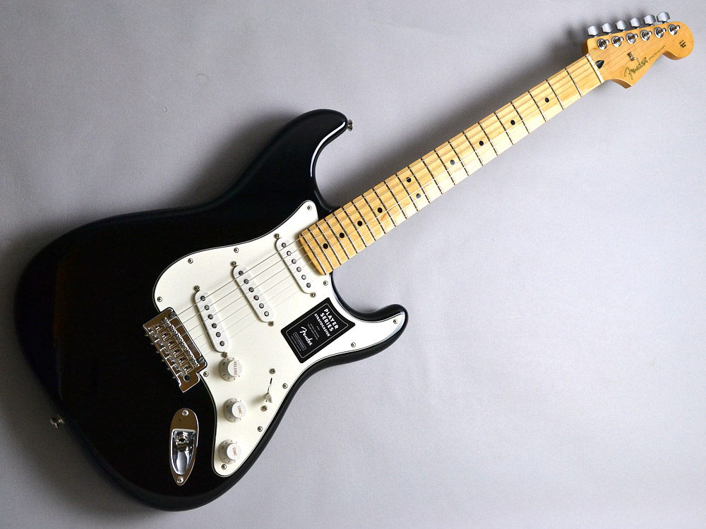 PLAYER STRATOCASTER MNのケース・その他画像
