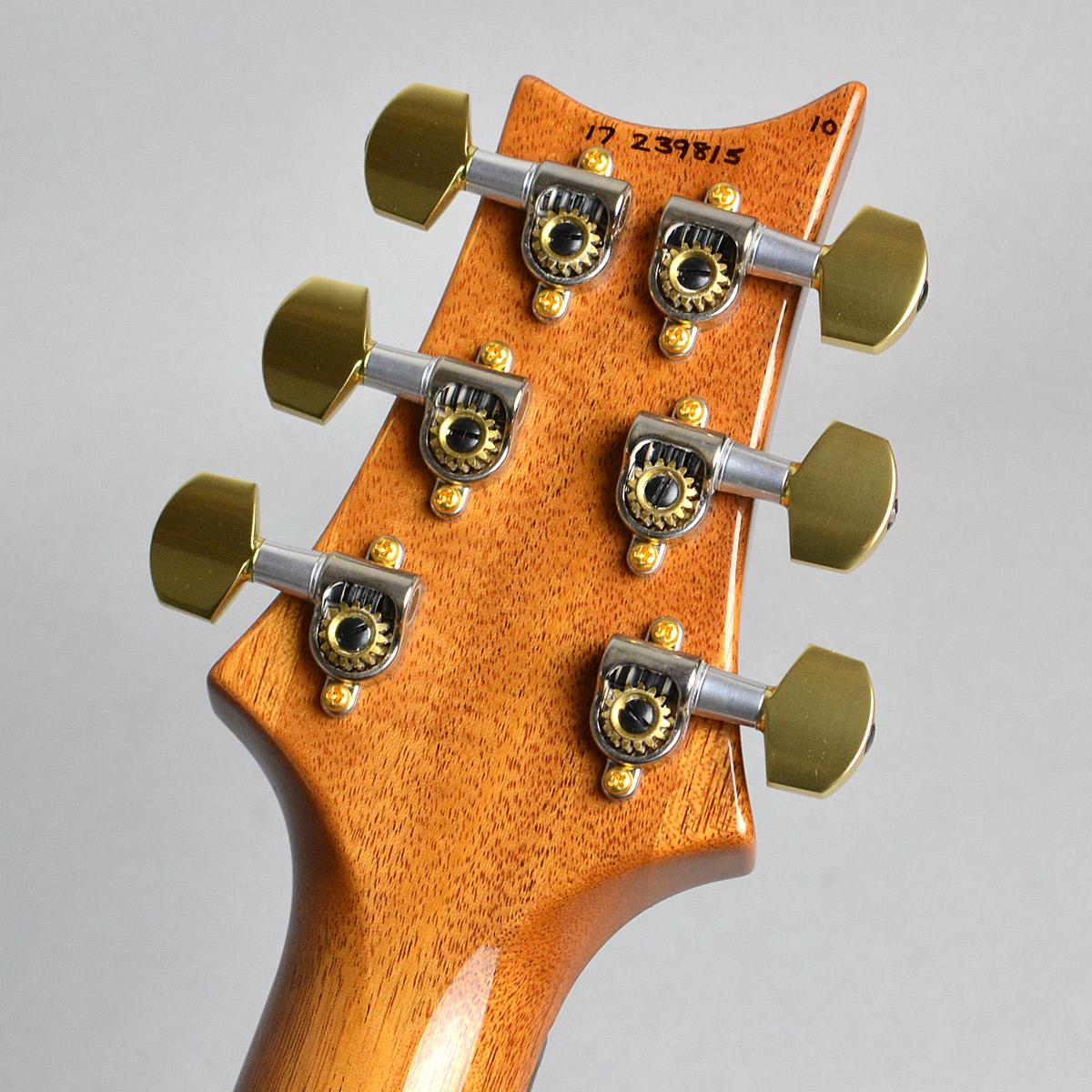 Custom24 10Top Pattern Thinのヘッド裏-アップ画像