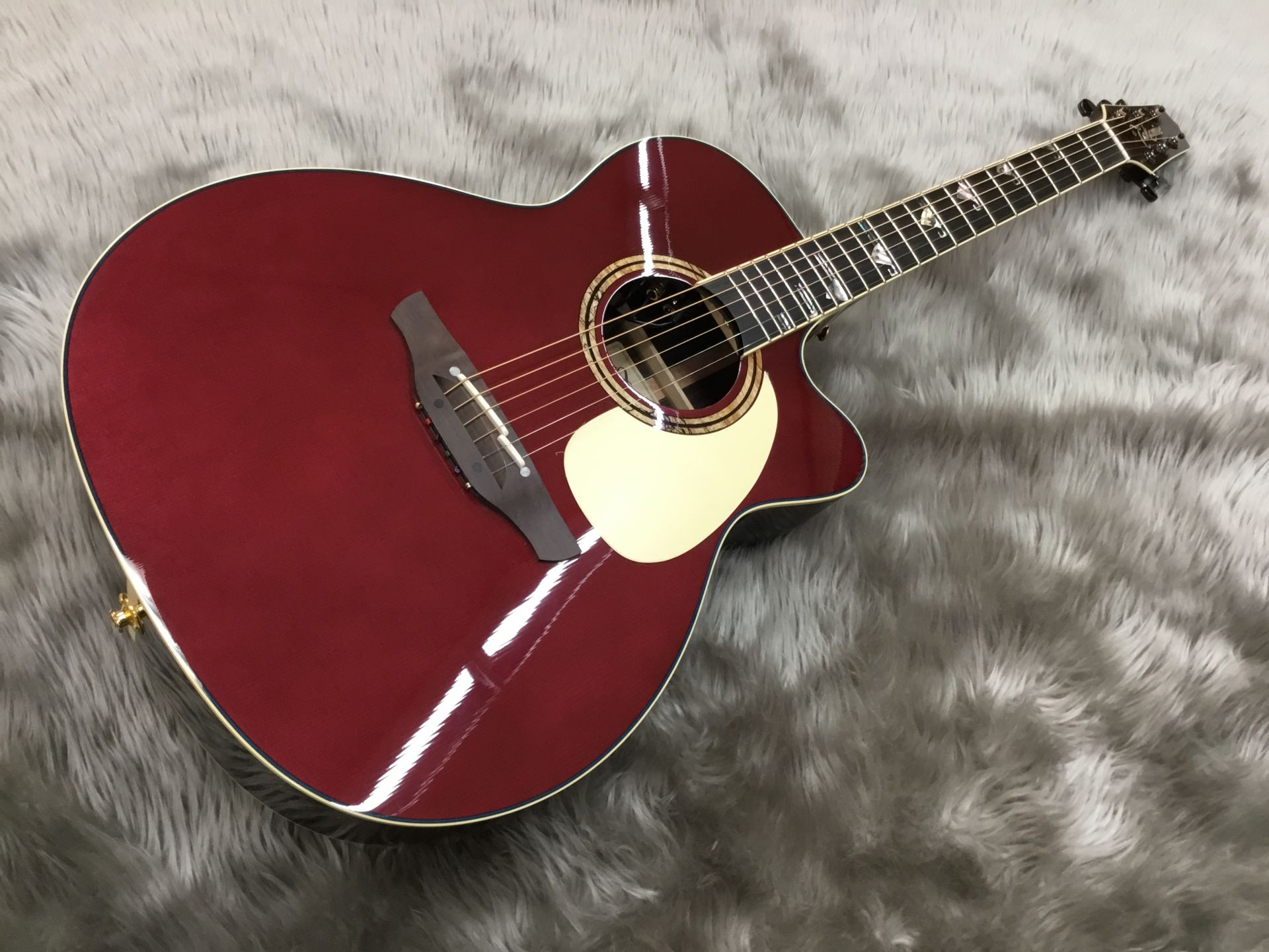 Takamine  TDP700CUSTOM/Eagle 写真画像