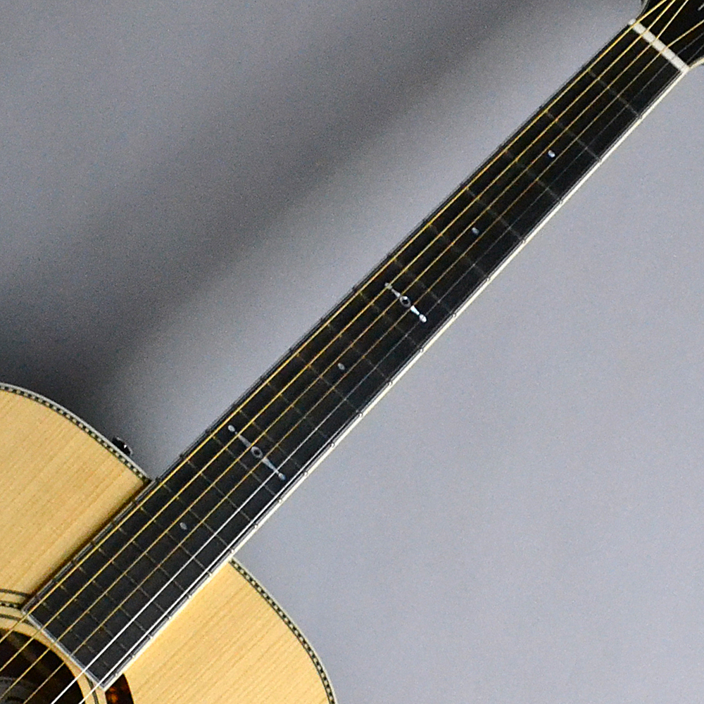 Paramount Series PM-1 Limited Adirondack Dreadnought Rosewood Natural (N) 【S/N:CC161004827】のボディバック-アップ画像