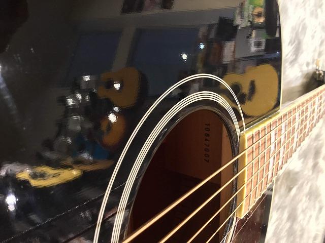 SOUTHERN JUMBO EBONYのヘッド画像