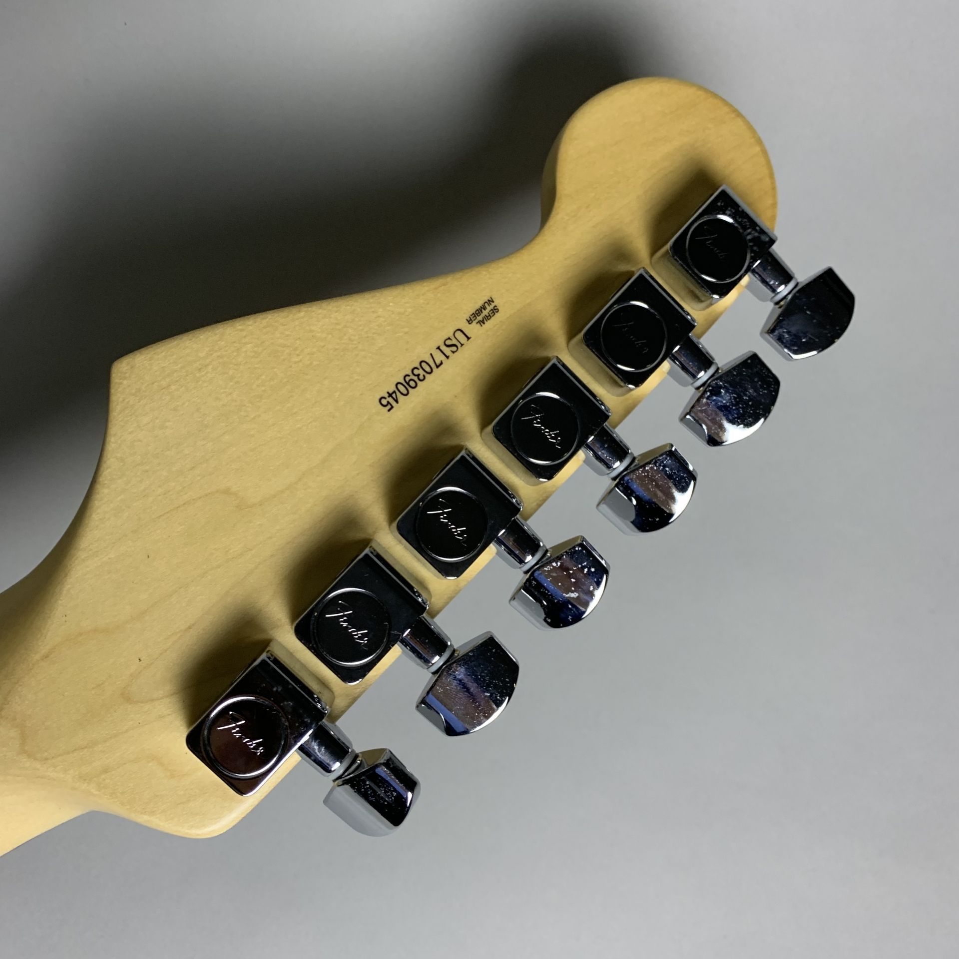 American Professional Stratocasterのケース・その他画像