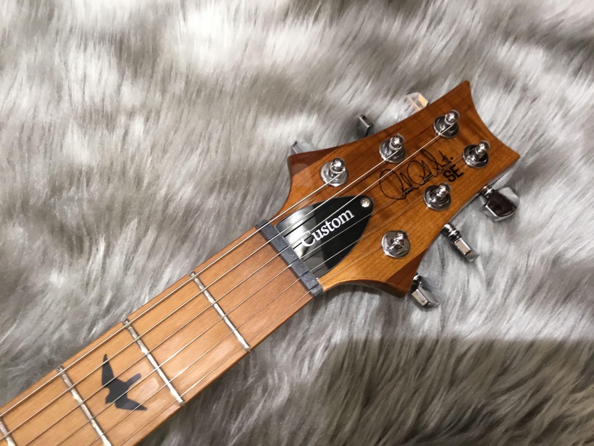 SE Custom 24 Roasted Maple Limited Sapphiree/Natural Backのヘッド画像