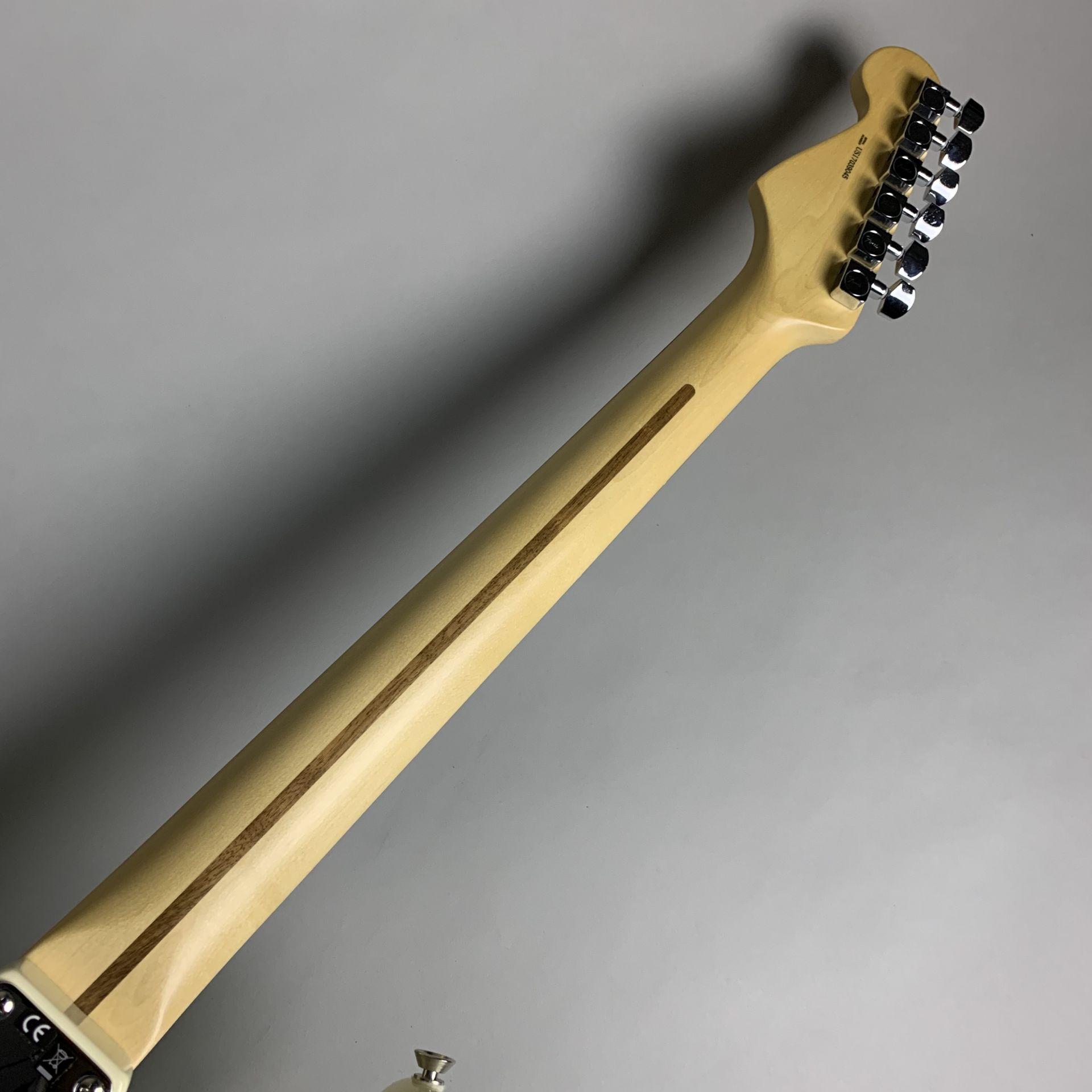 American Professional Stratocasterの指板画像
