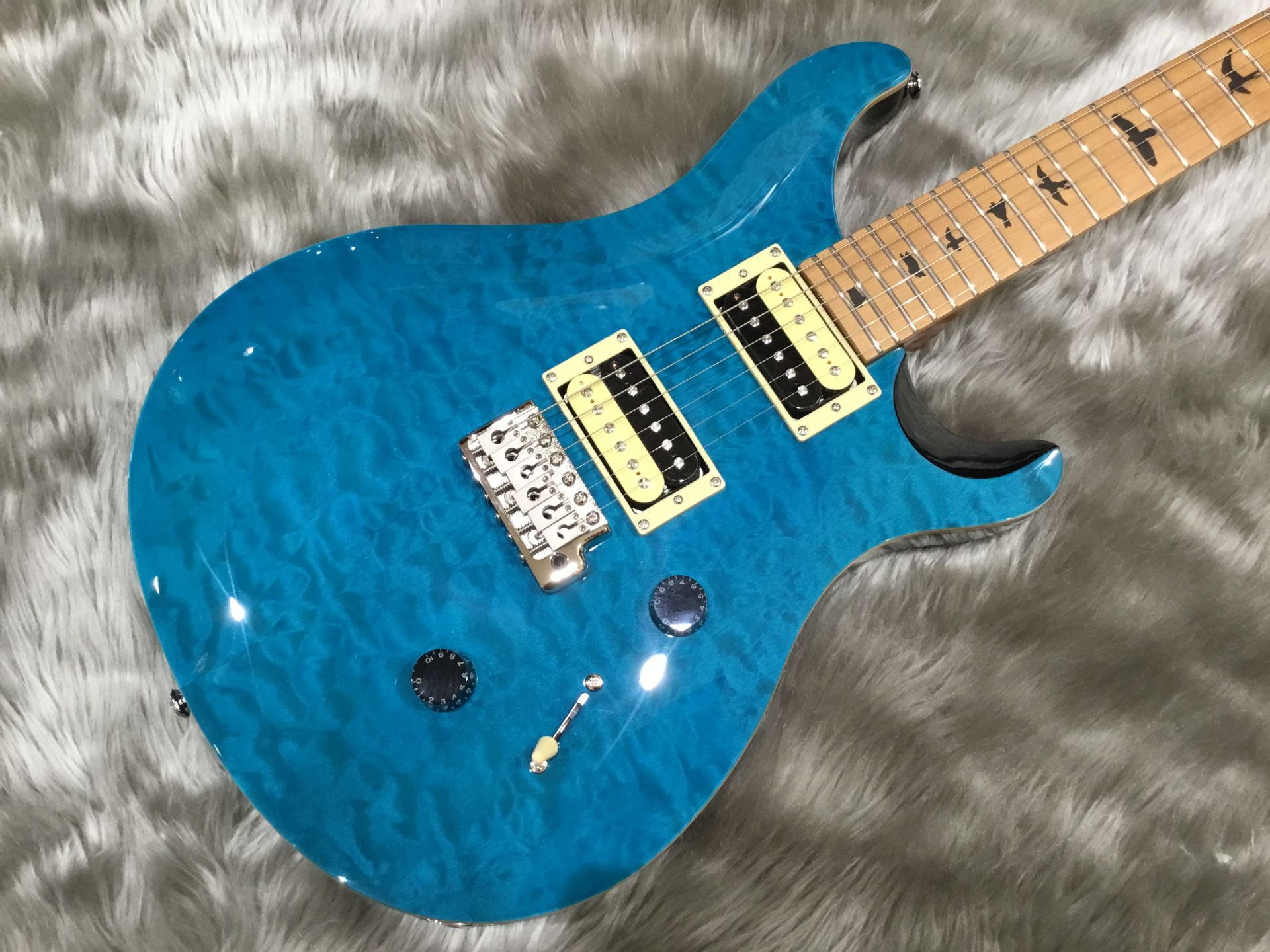 SE Custom 24 Roasted Maple Limited Sapphiree/Natural Backのボディトップ-アップ画像