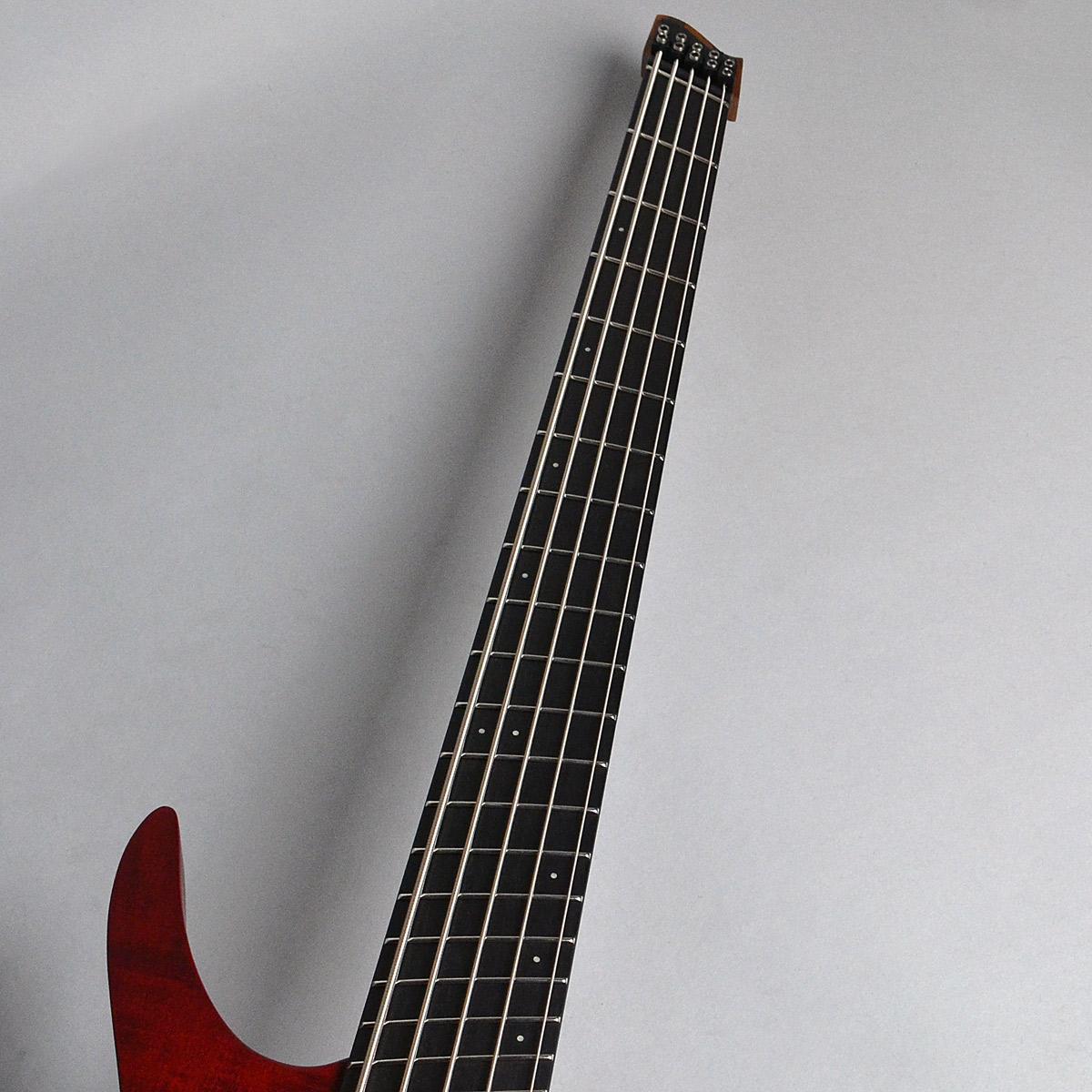 Boden Prog Bass 5stの指板画像