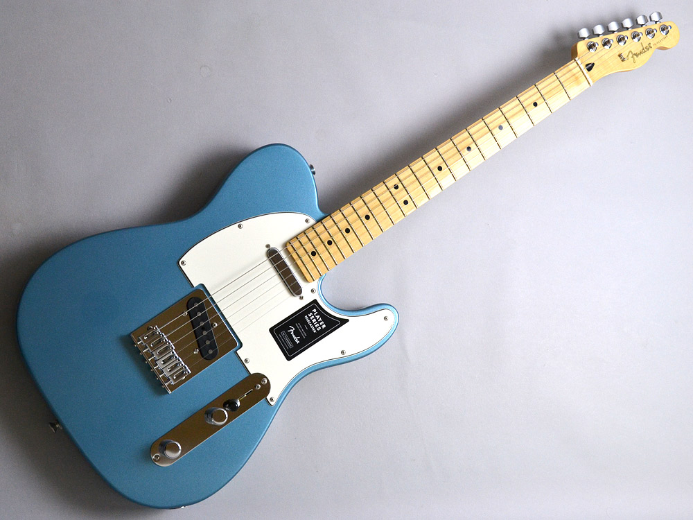 PLAYER TELECASTER MNのケース・その他画像