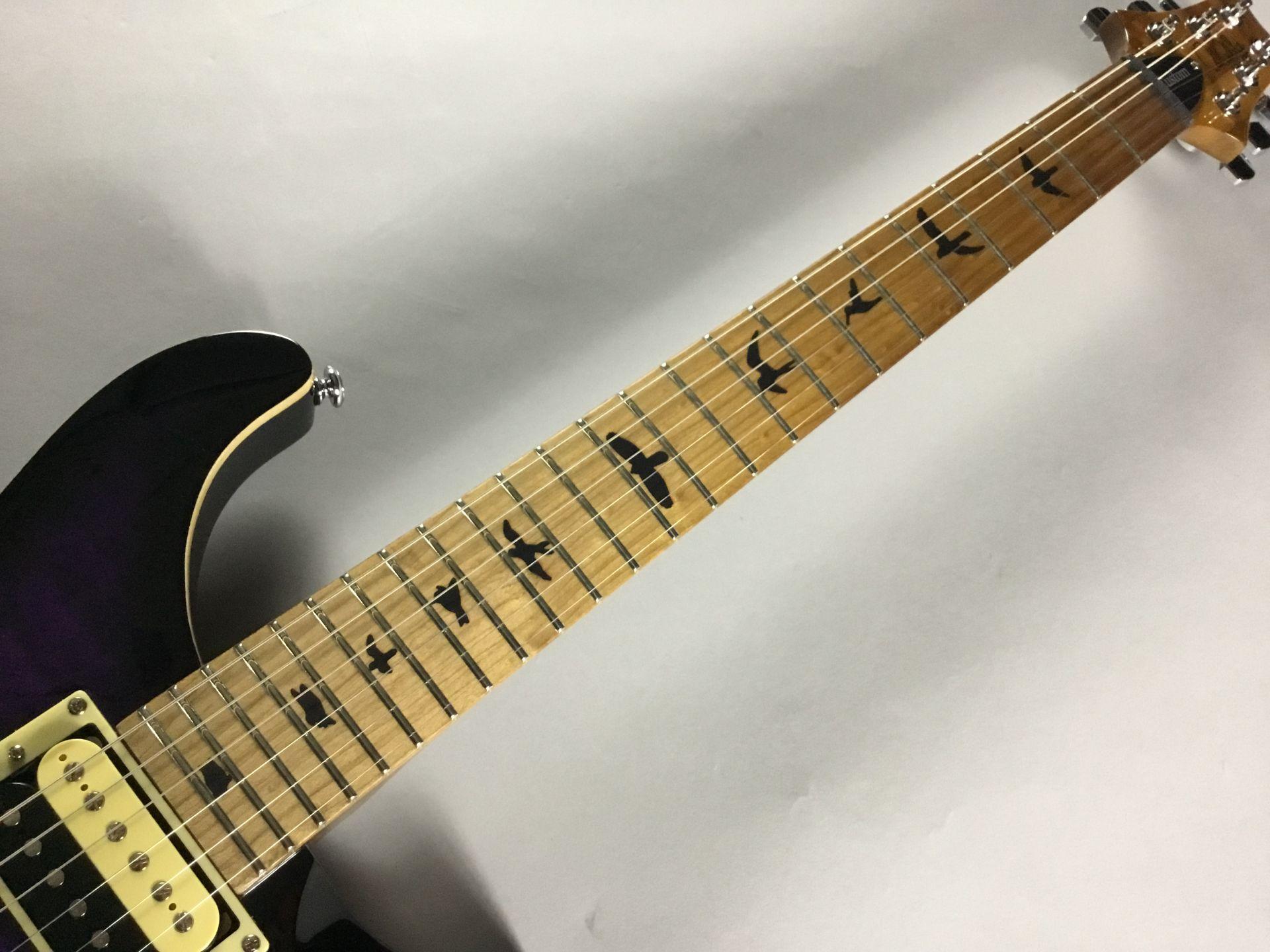 SE Custom 24 Rasted Maple【限定品】のボディバック-アップ画像