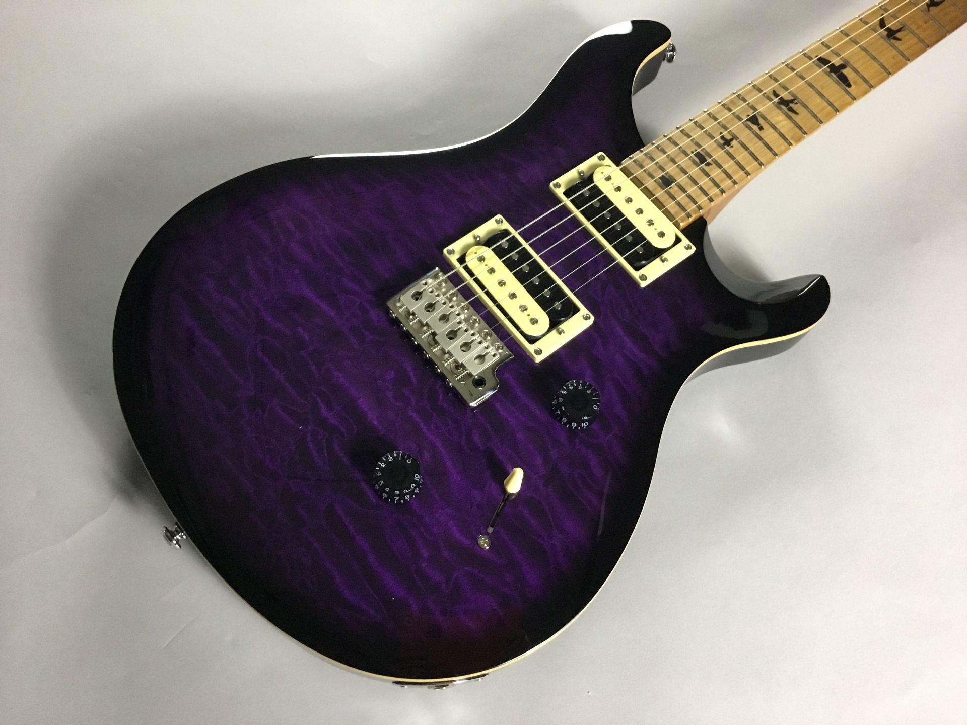 Paul Reed Smith(PRS)  SE Custom 24 Rasted Maple... 写真画像